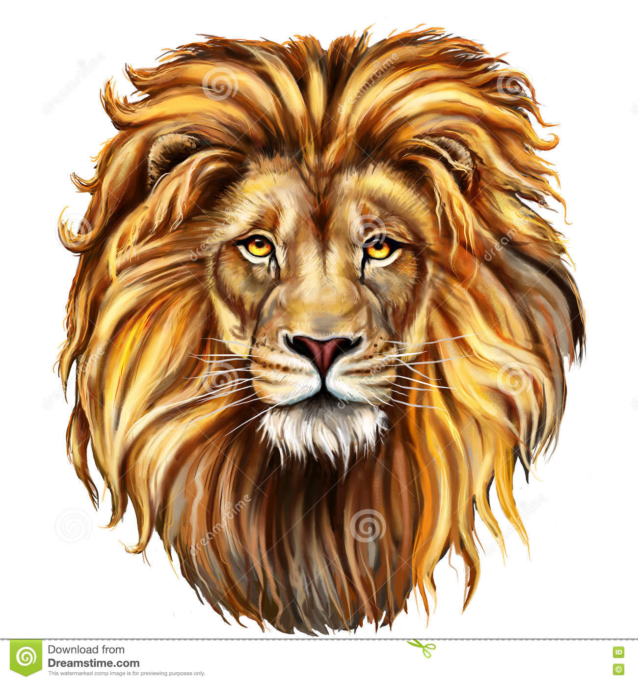 Lion Stock Illustrations 84 455 Lion Stock Illustrations Vectors Clipart Dreamstime Illustration of abstract red lion, animal and painted its. dreamstime com