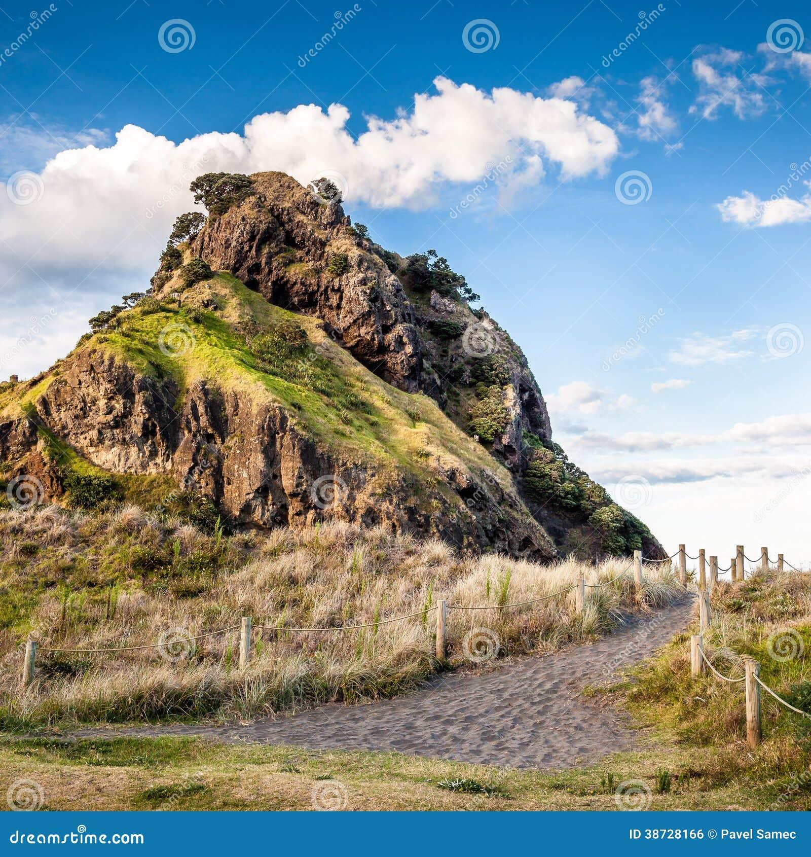 Lion Rock (spiaggia di Piha, Nuova Zelanda)
