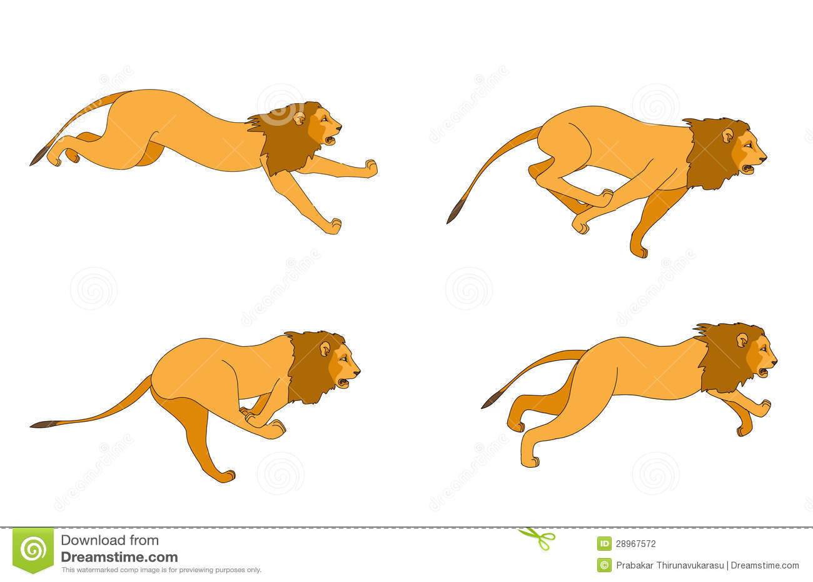 53 Majestic Lion Photos  Pexels  Free Stock Photos