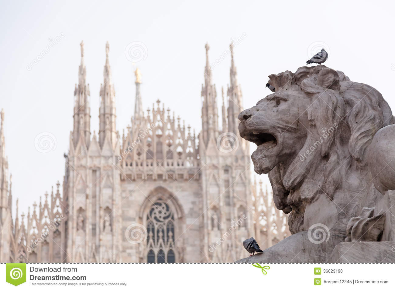 Lion Statue In Milano And Cathedral Stock Photo Image