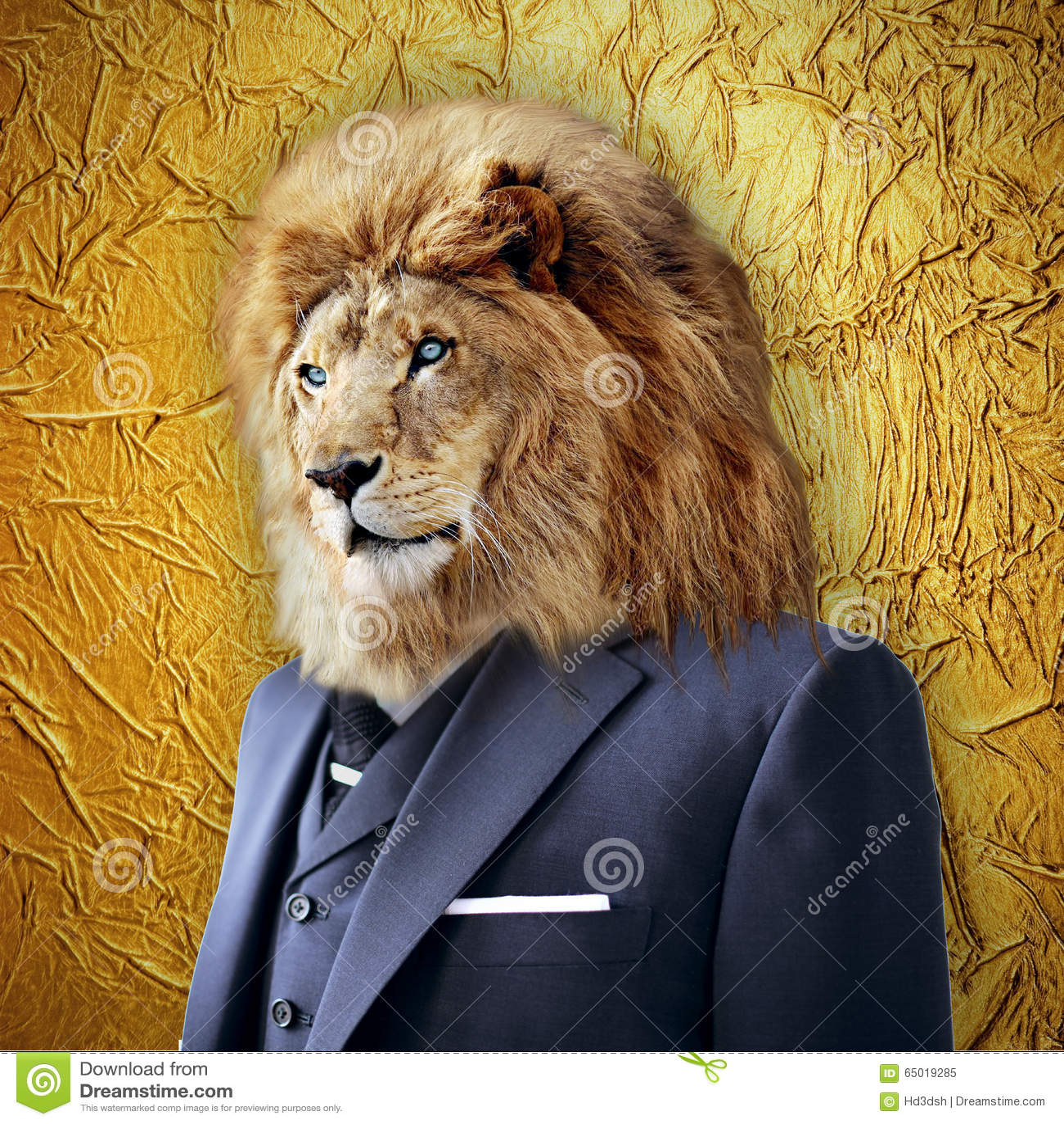 ¿Qué animal te representa? Lion-suit-business-concept-gold-background-65019285