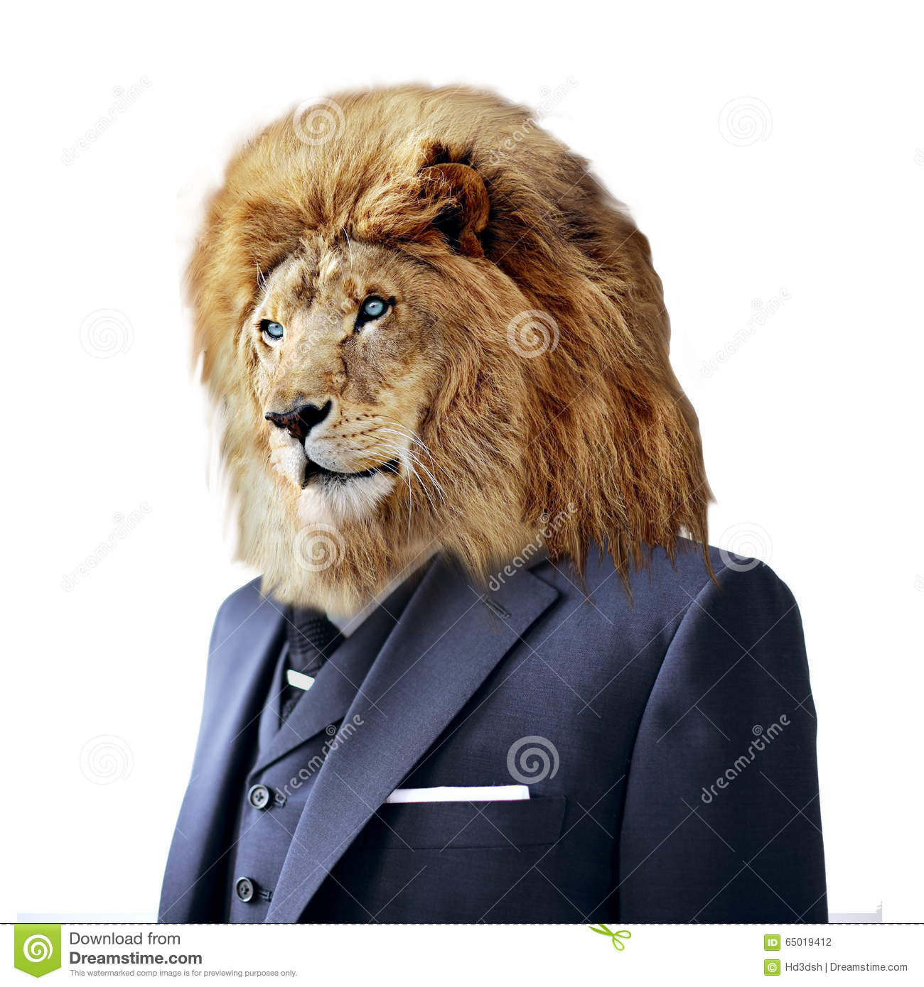 Lion In Suit Isolated On White Business Concept Stock