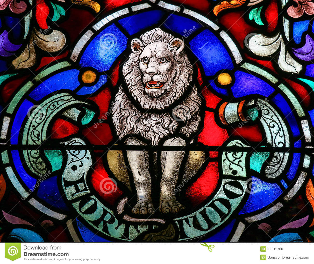 lion symbol of strength stock photo image of stron