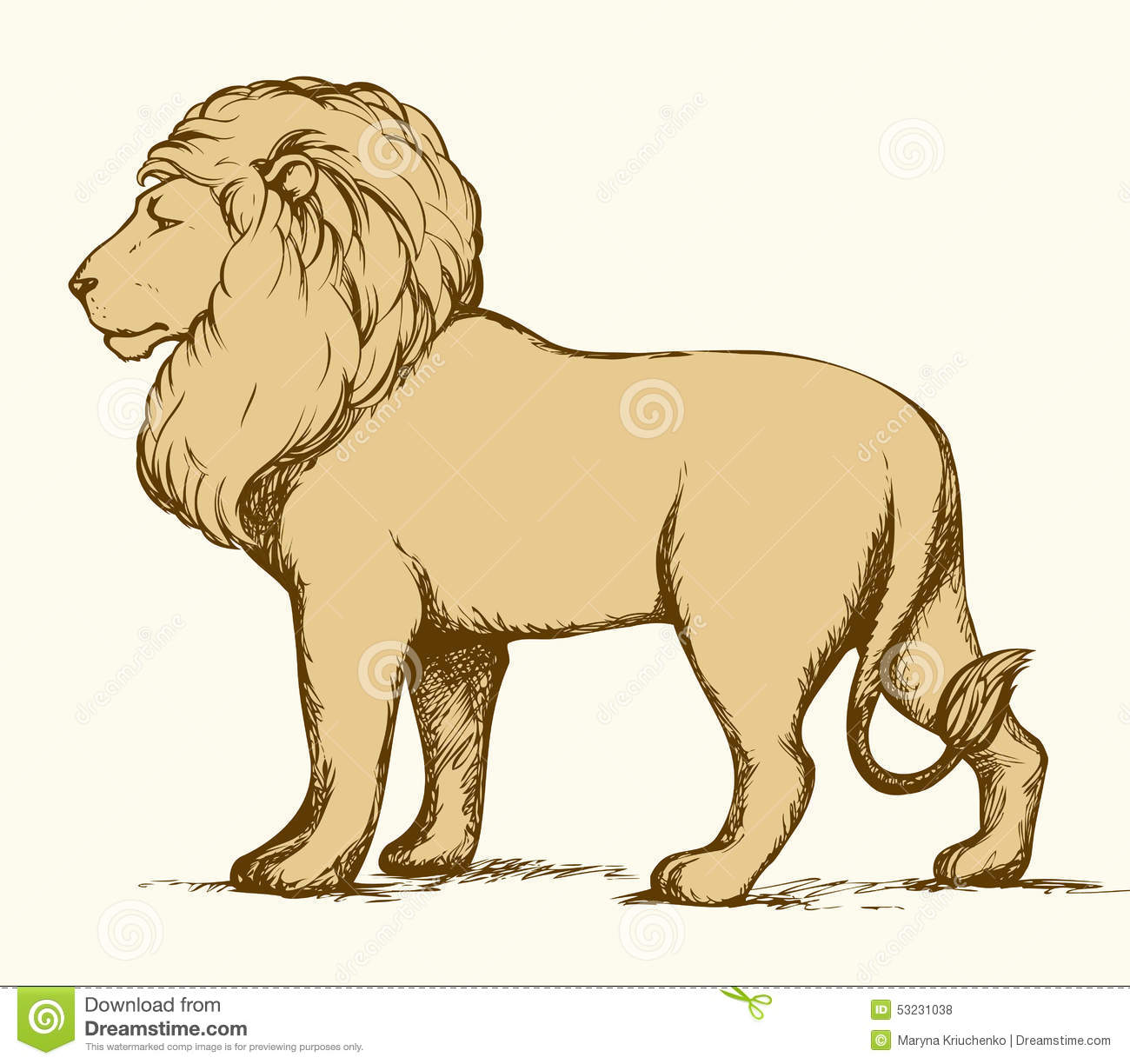 Lion. Vector Drawing Stock Vector