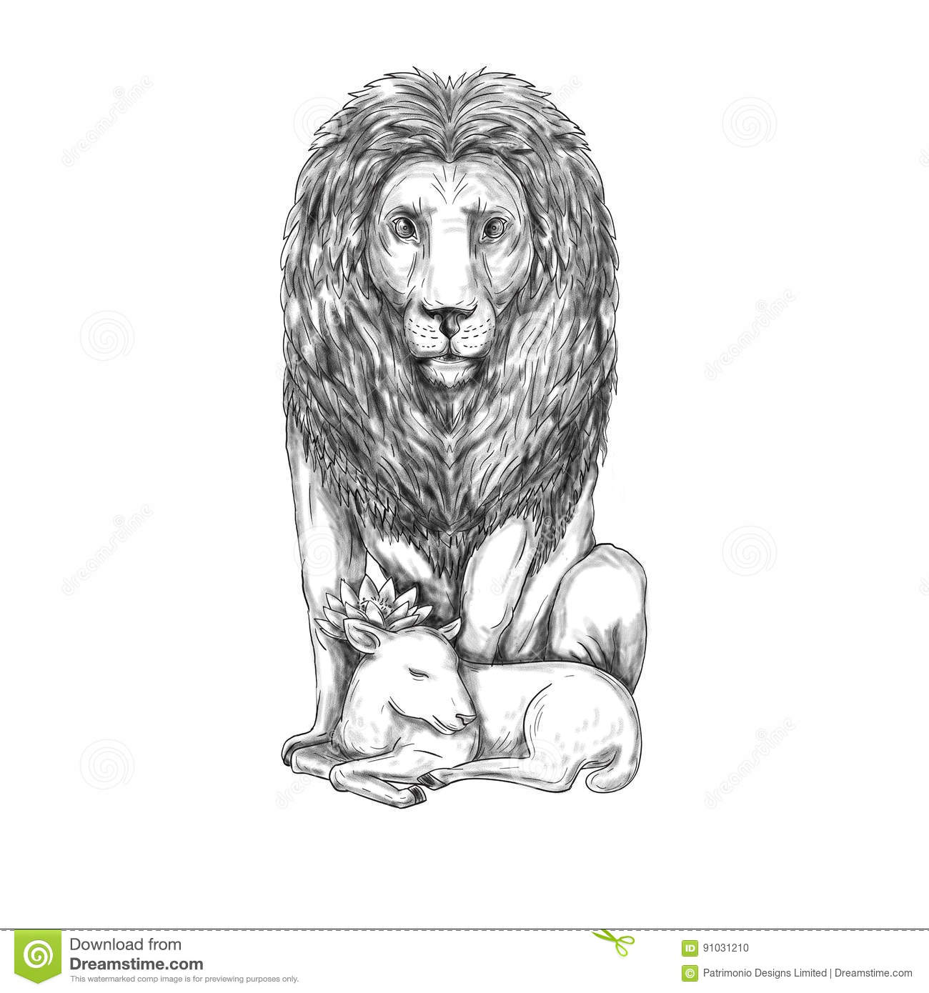 Lion Lamb Stock Illustrations 469 Lion Lamb Stock Illustrations Vectors Clipart Dreamstime A painting i did of a lion with a lamb, to remember the hope of the coming of christ, and better things. dreamstime com
