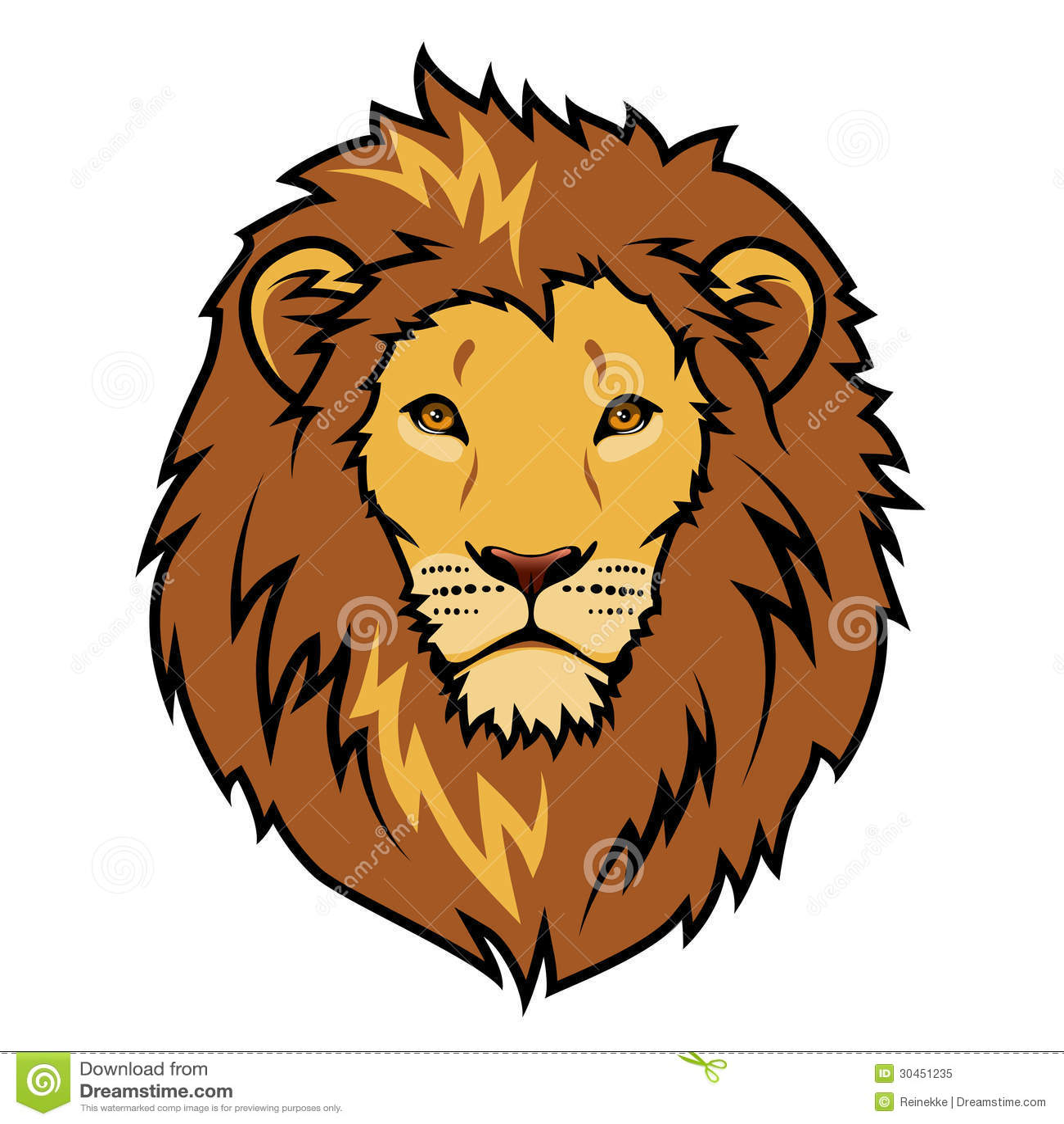Lions Head Stock Vector Illustration Of Feline Mane 30451235
