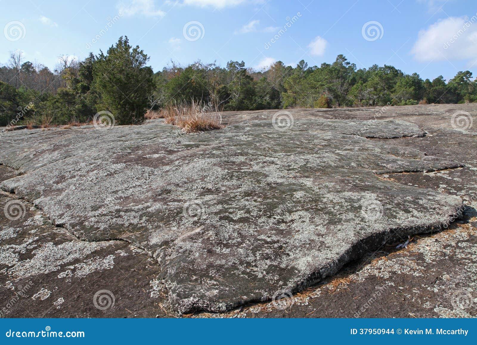 Liquenes y musgo que cubren un afloramiento de roca del - Fotos de granito ...