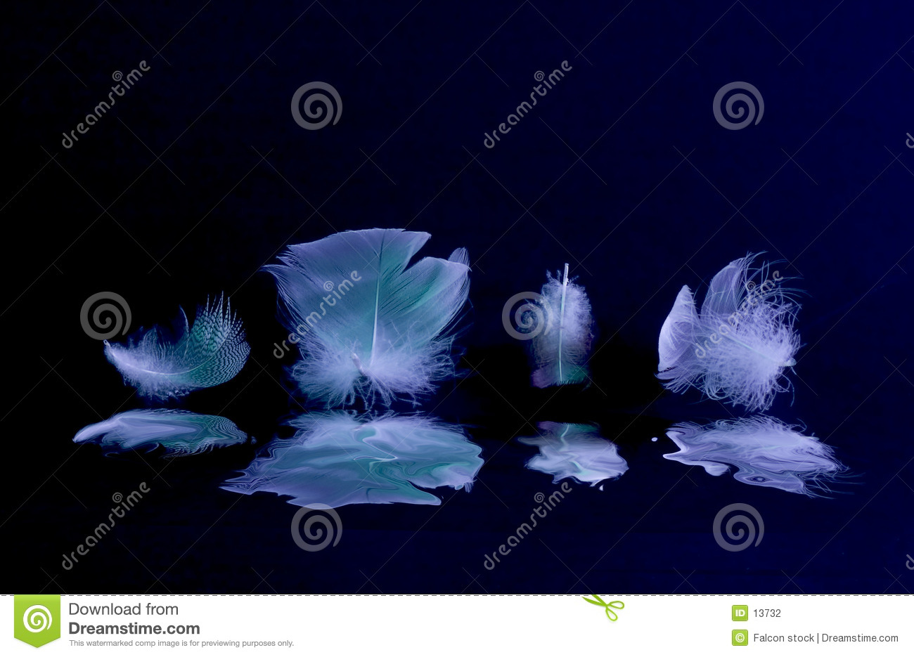 Liquified Feathers
