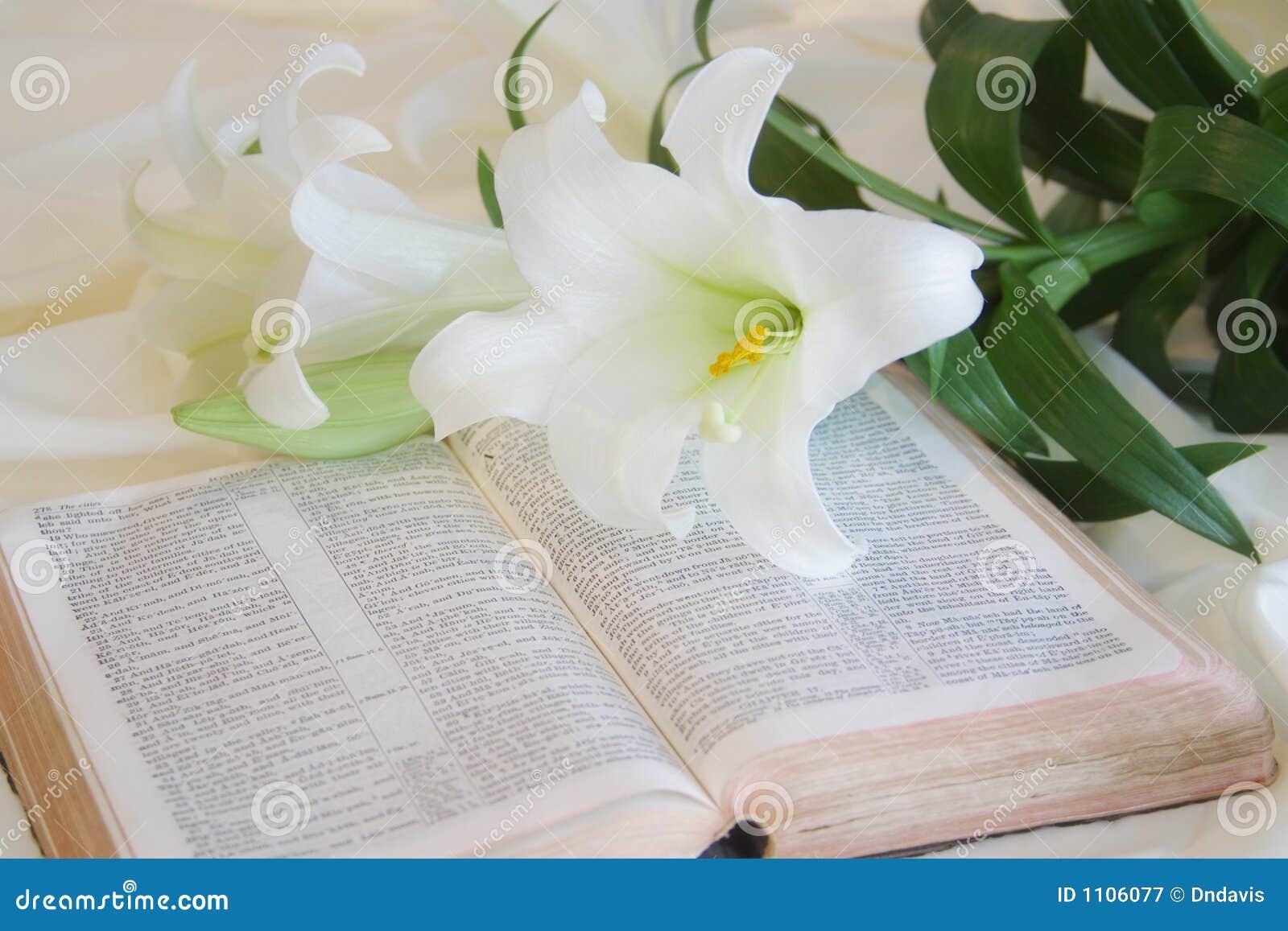 Lis de Pâques