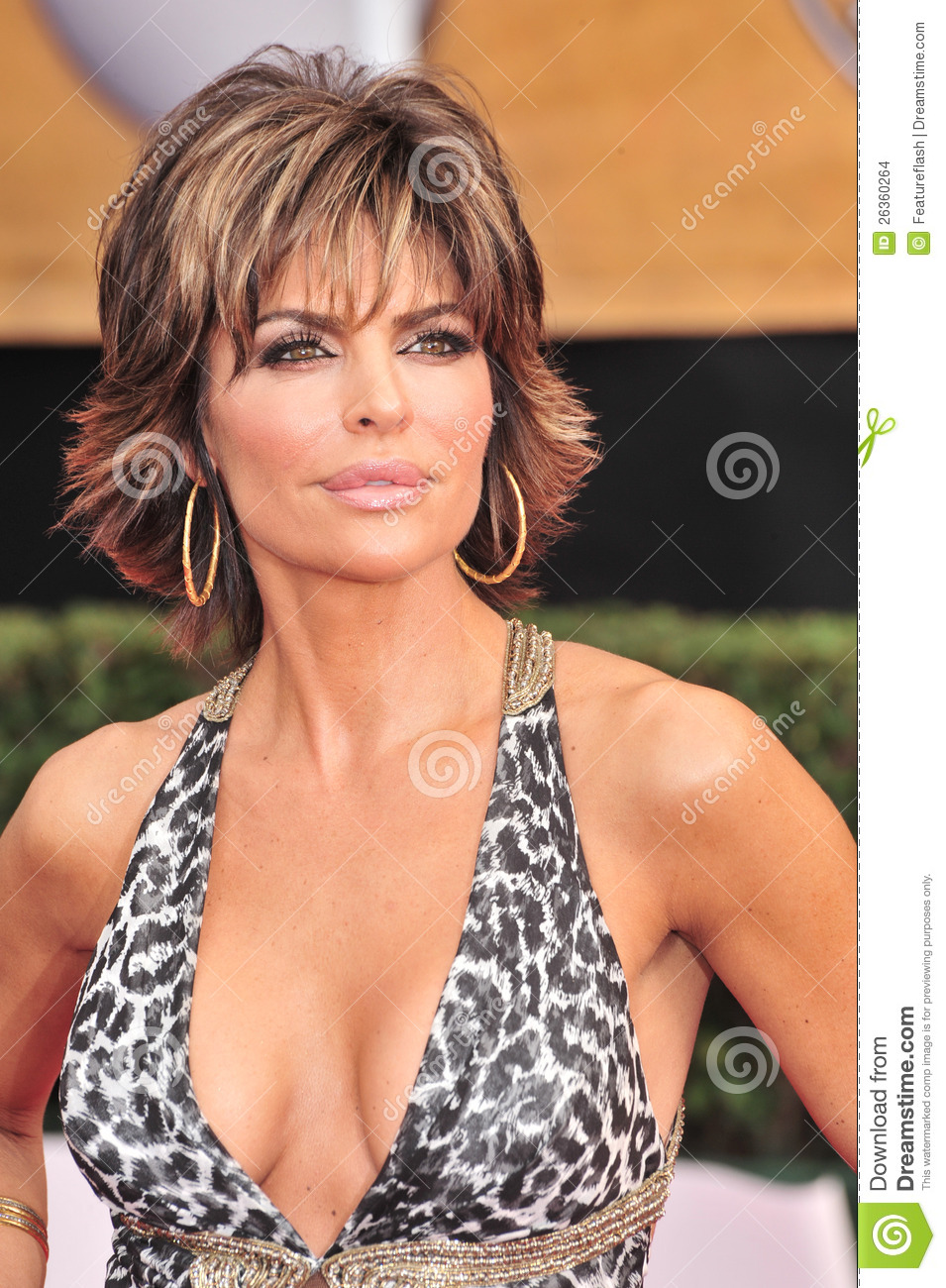 Lisa Rinna at the 14th Annual Screen Actors Guild Awards at the Shrine ...