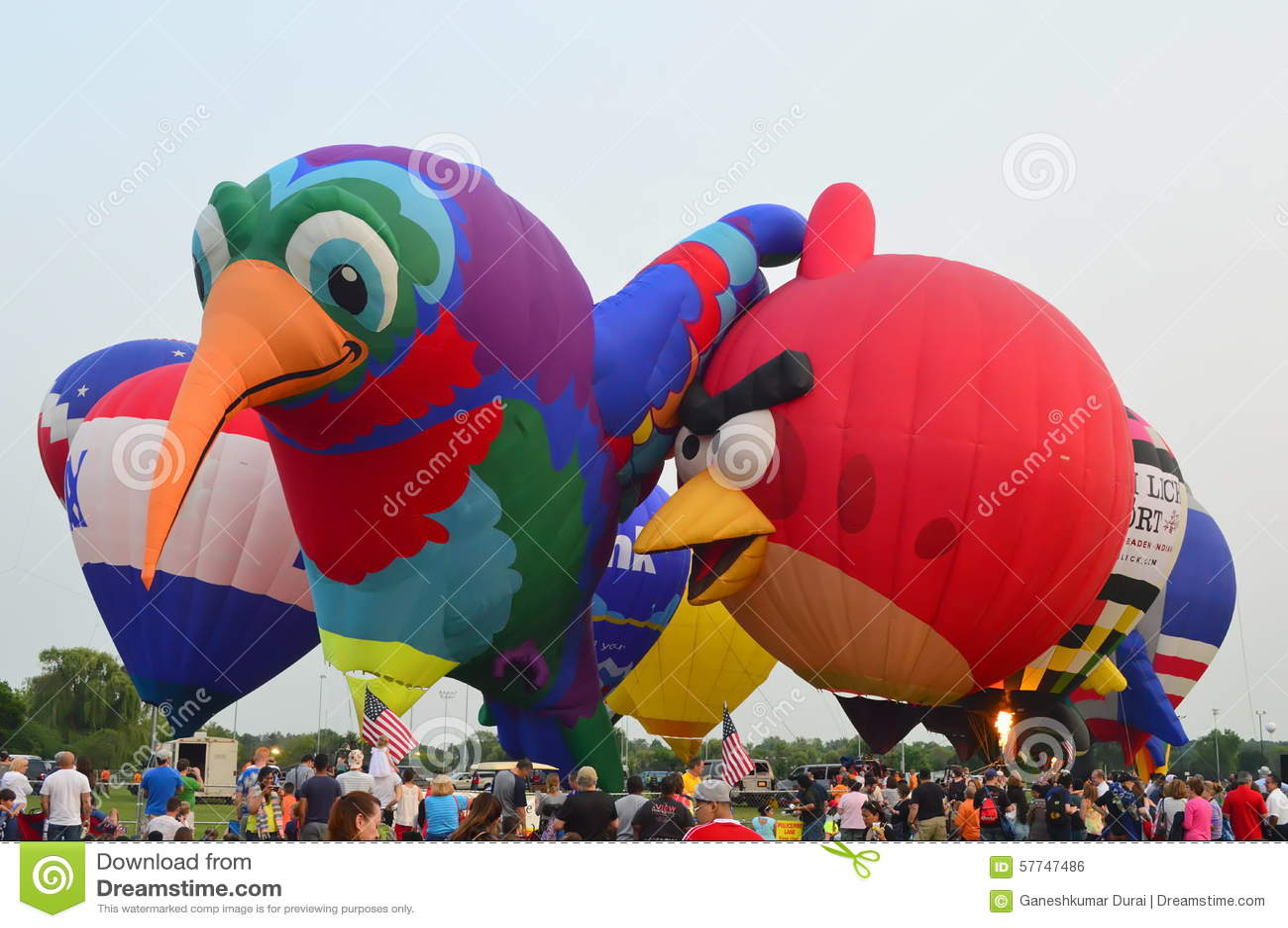 Lisle Balloons - yeux au festival de cieux