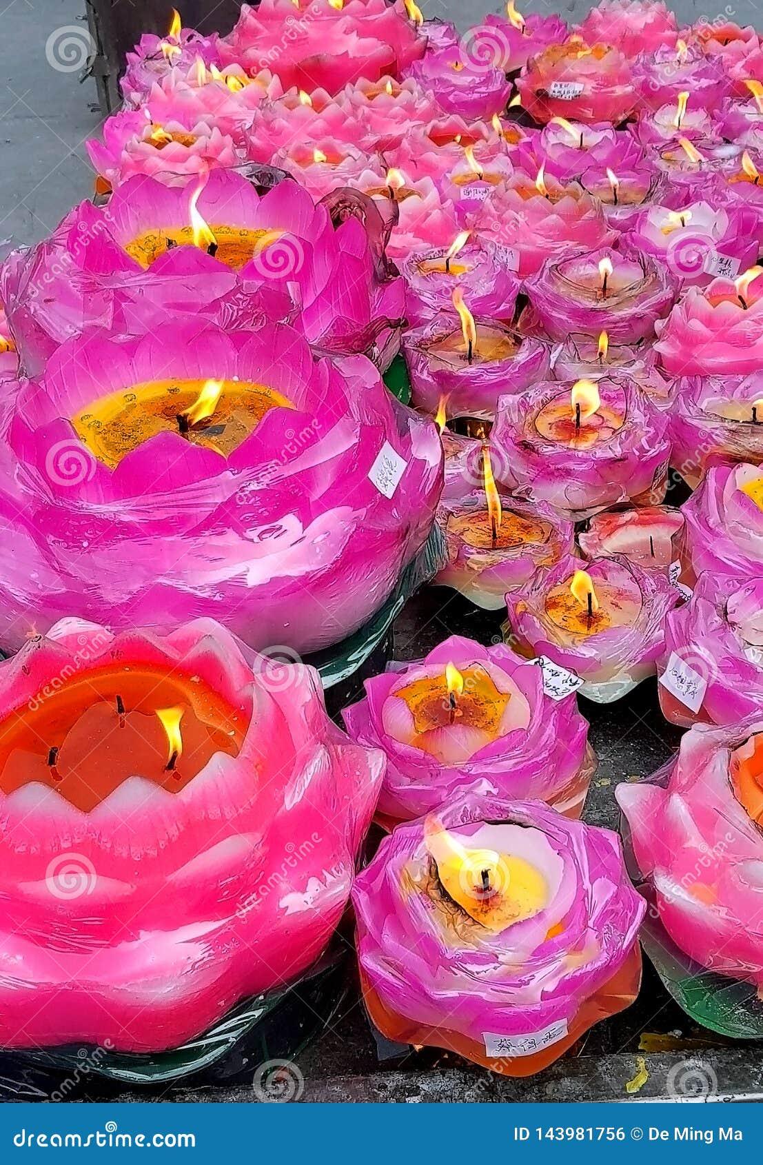 Lit-de cluster van de lotusbloembloem
