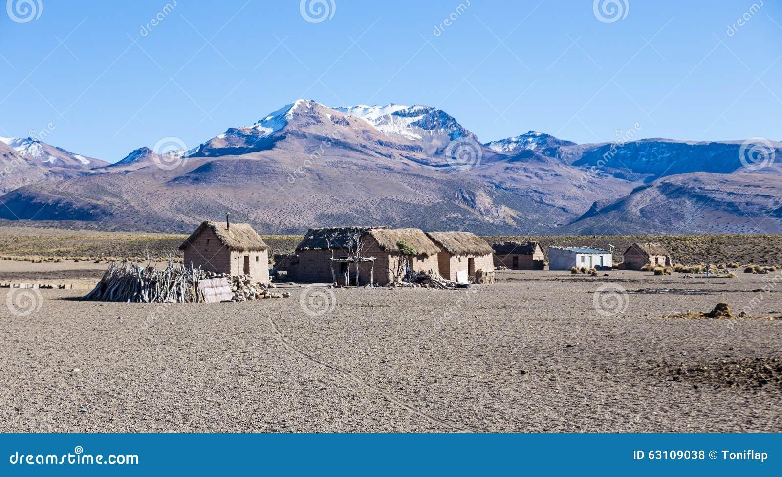 Liten by av herdar av lamor i de Andean bergen