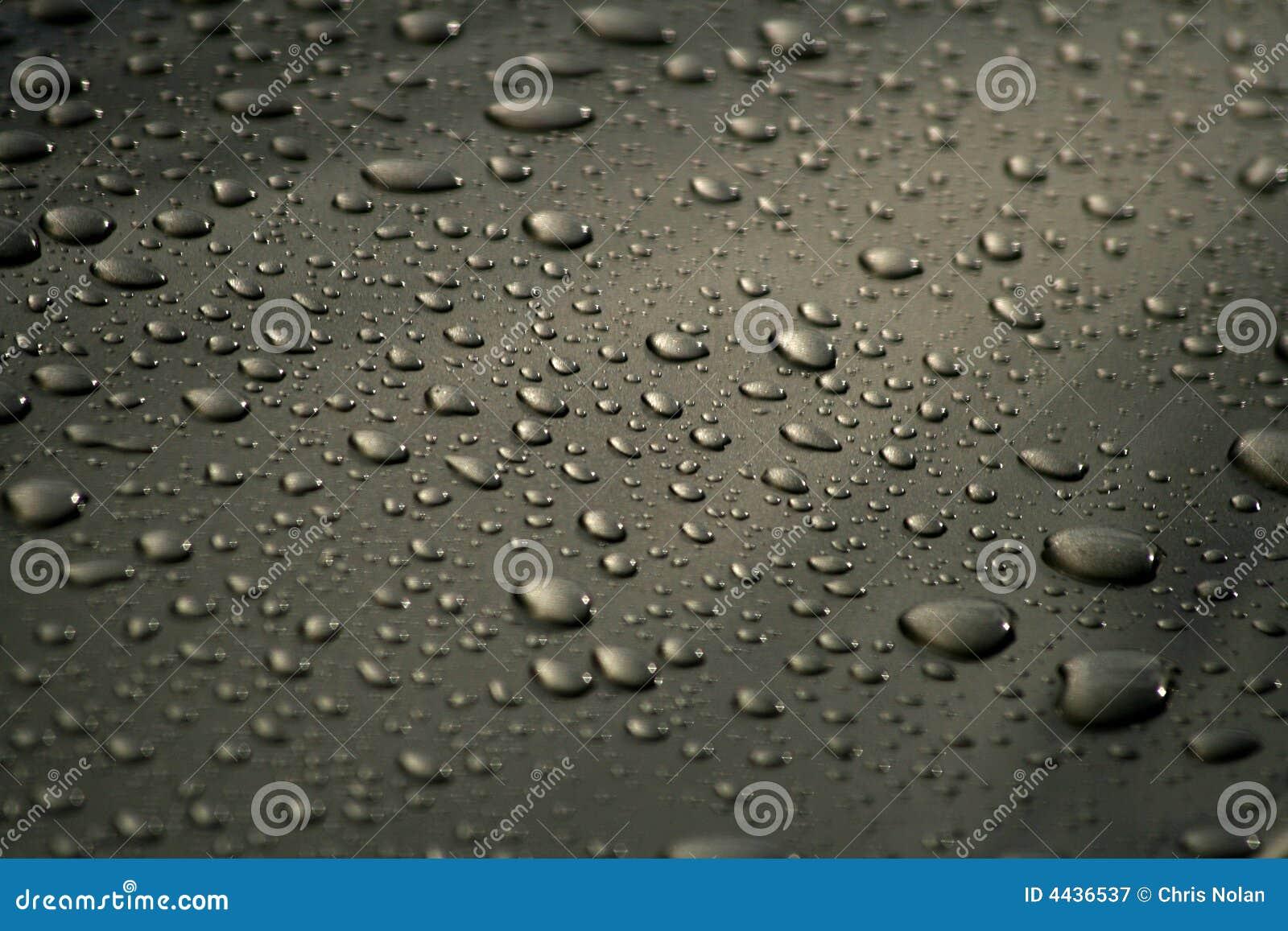 Liten droppe rain att vila
