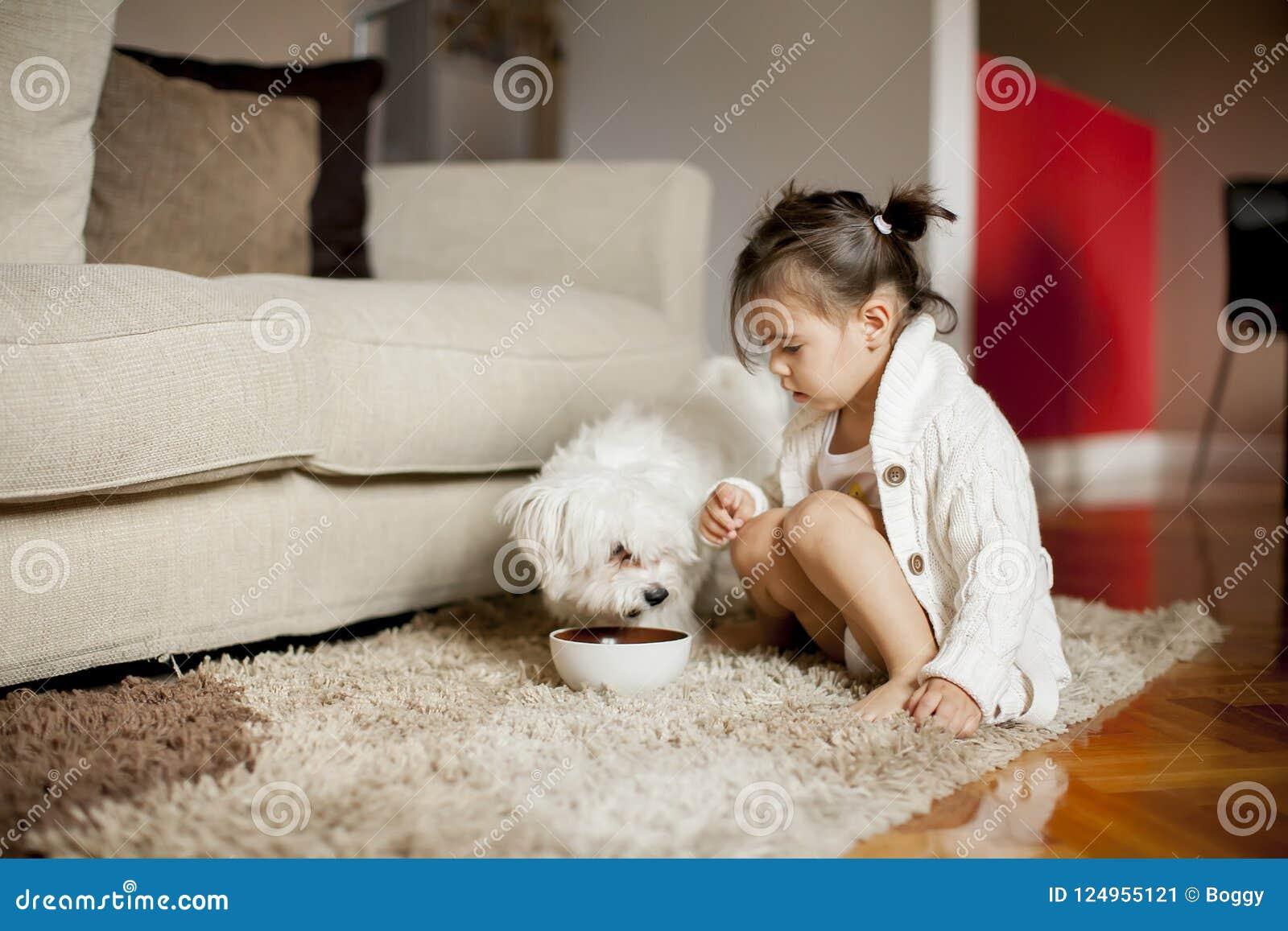 Liten flicka som spelar med den vita hunden i rummet