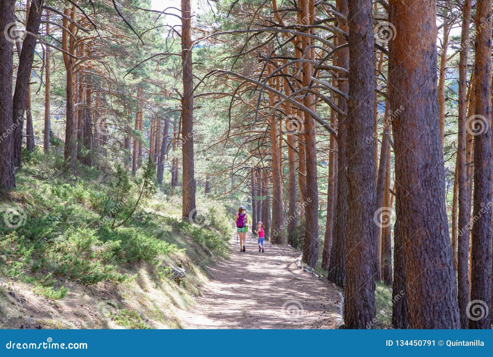 Liten flicka som tillbaka ser bredvid en kvinna som nära fotvandrar på en bana i skog till Madrid