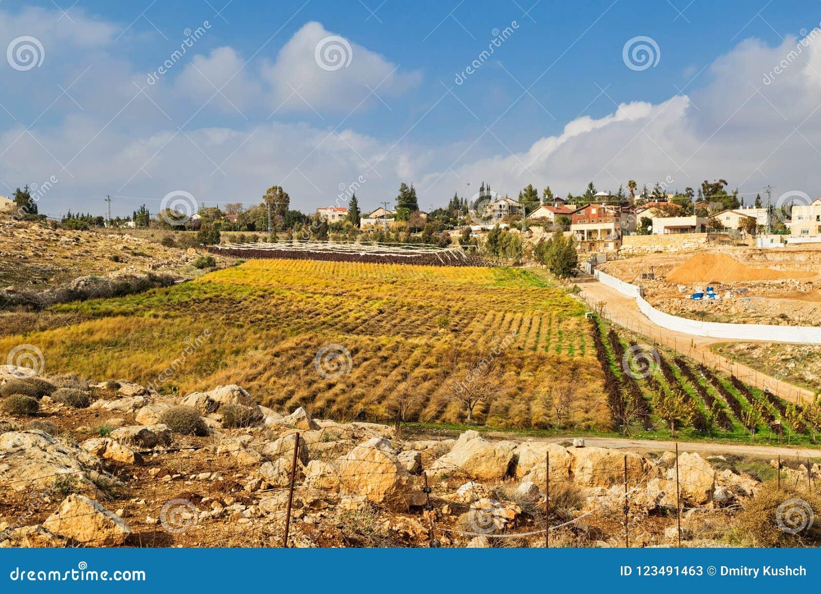 Liten judisk bosättning i den Judea öknen
