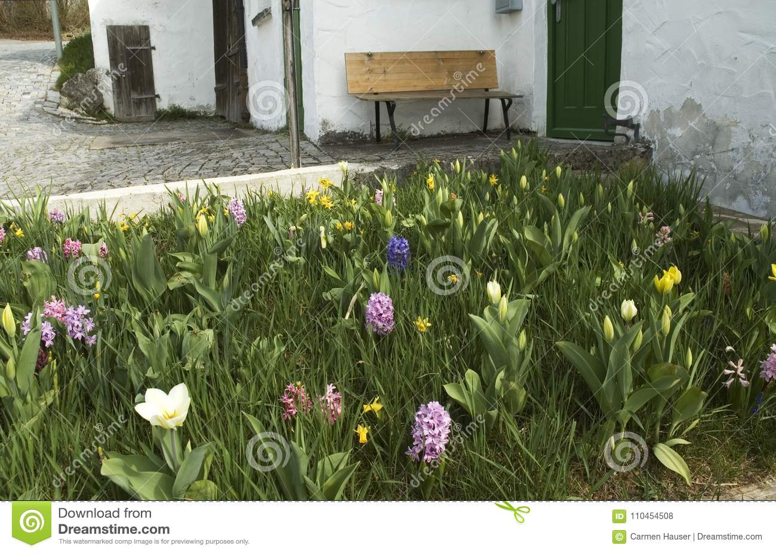 Liten stugaträdgård med vårblommor