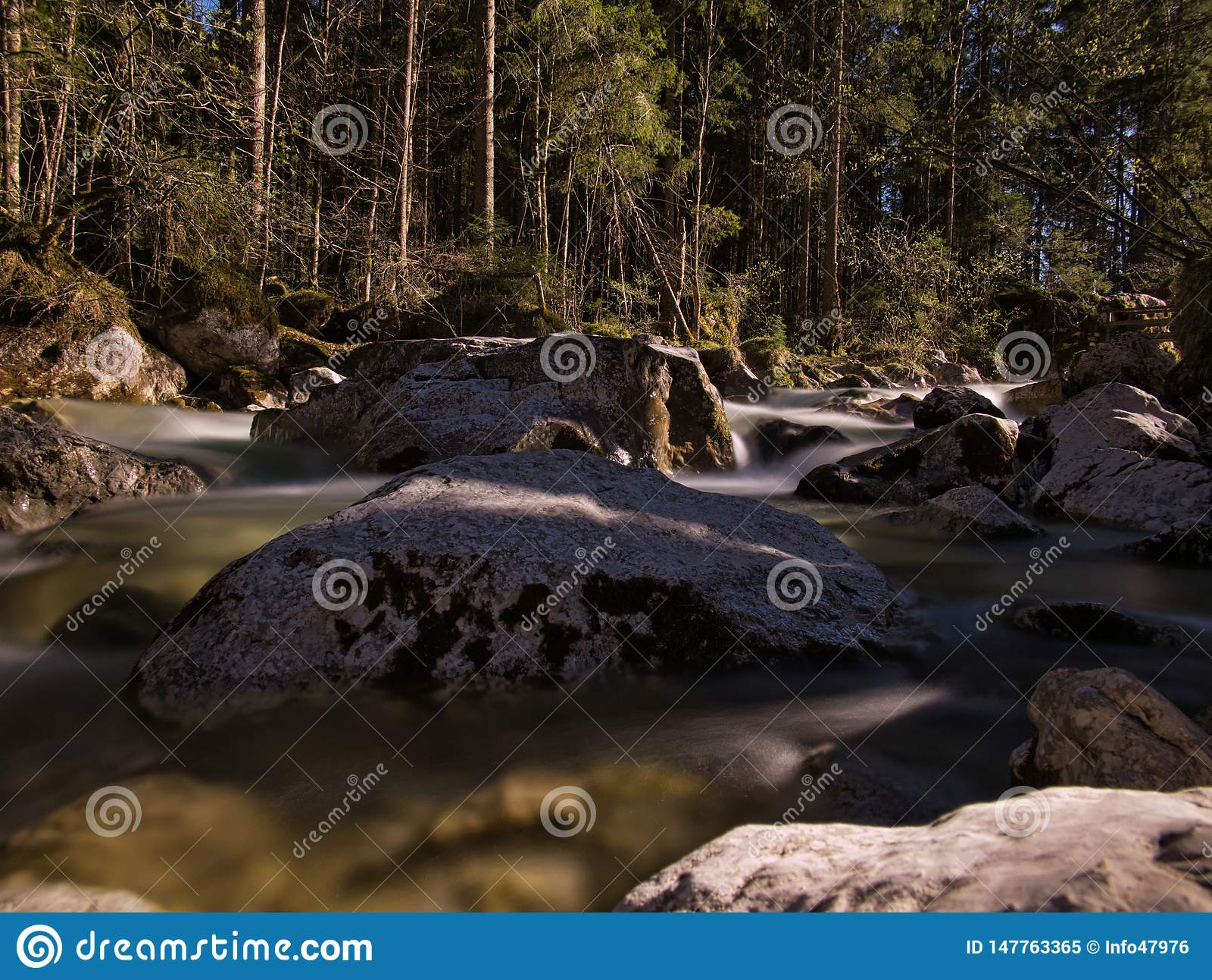 Liten vik på skogröjning med vaggar i vattnet
