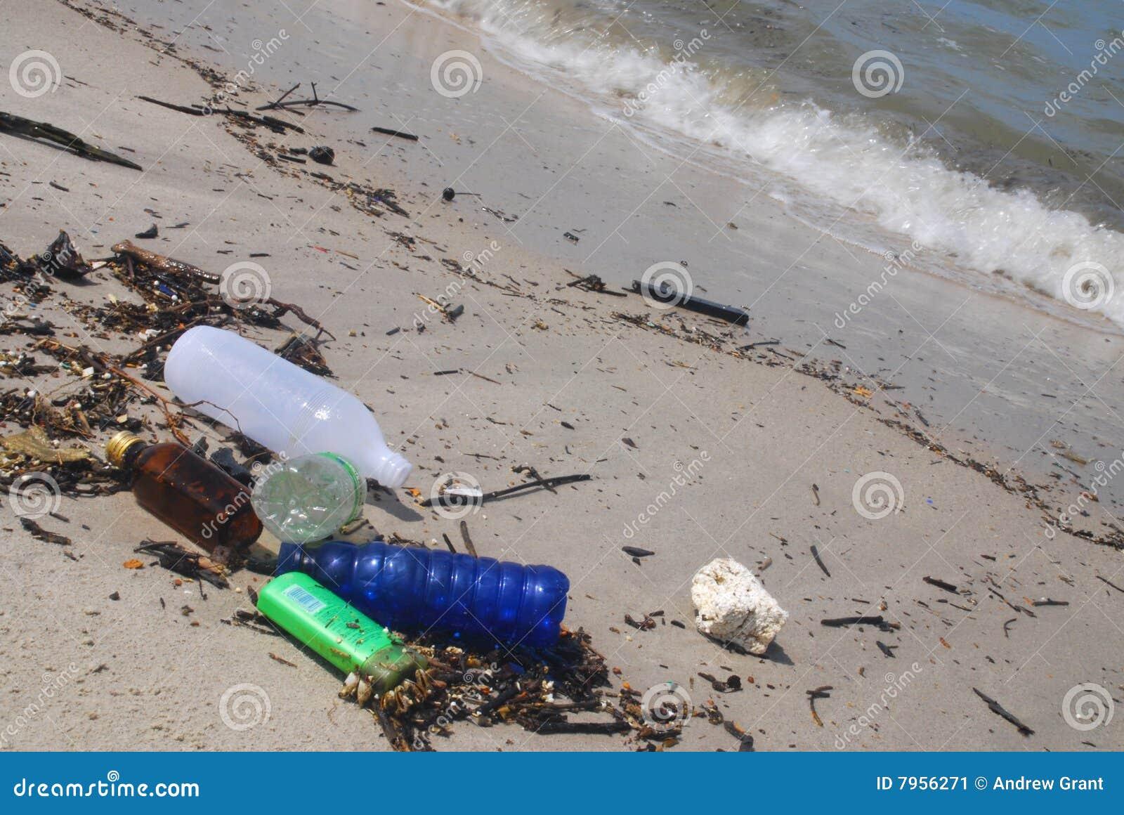 Litera de la playa