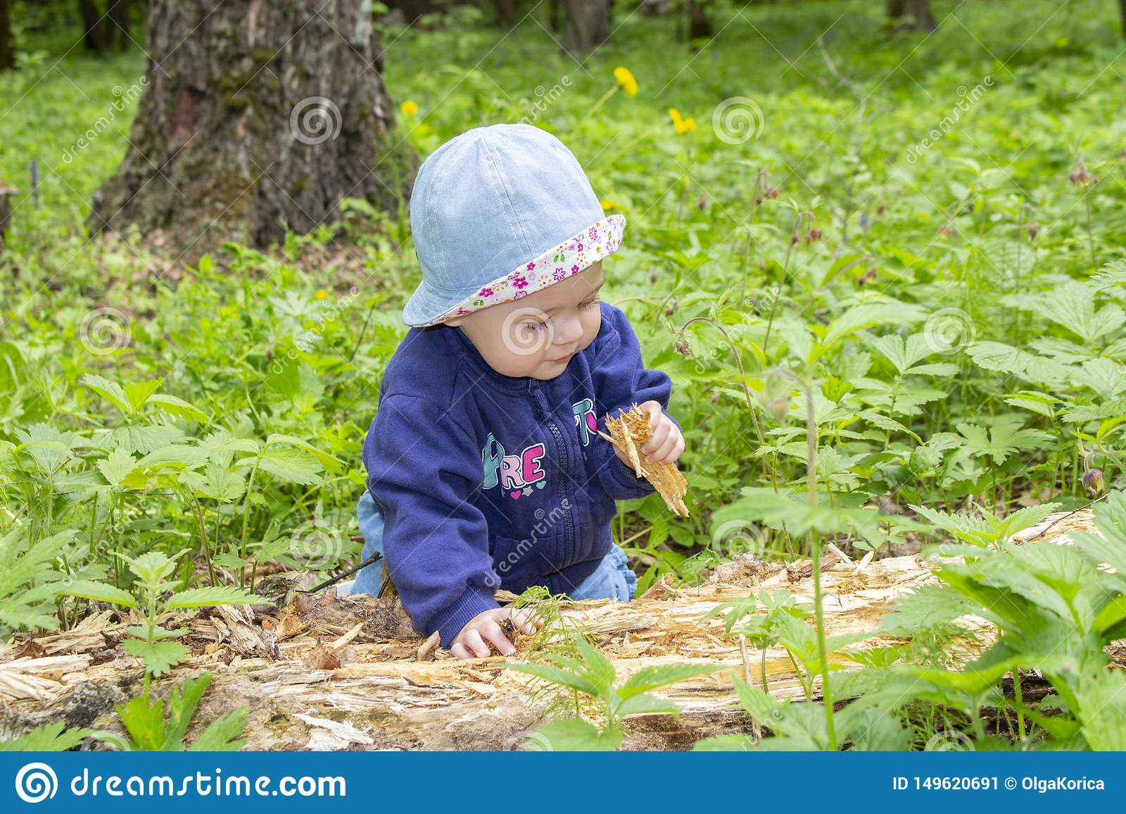 Litet behandla som ett barn flickan 9 månader som undersöker det ruttna trädet som går i trän, flickaungepikar i sågspån, mjuk fo