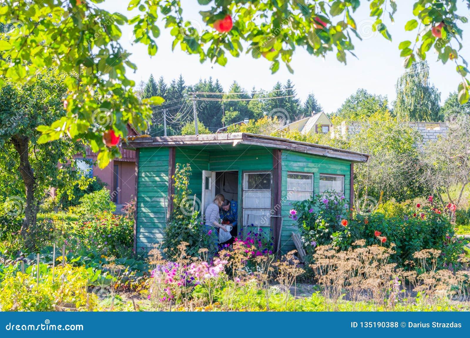 Litet gammalt träträdgårdhus i sommardag
