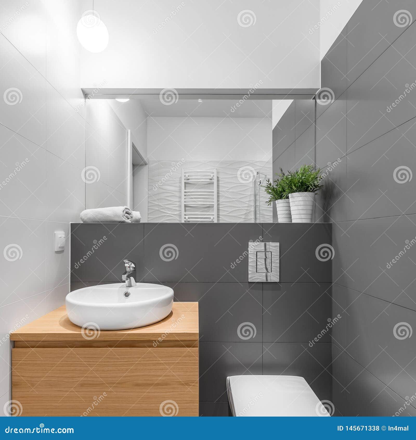 Litet gr?tt och vitt badrum
