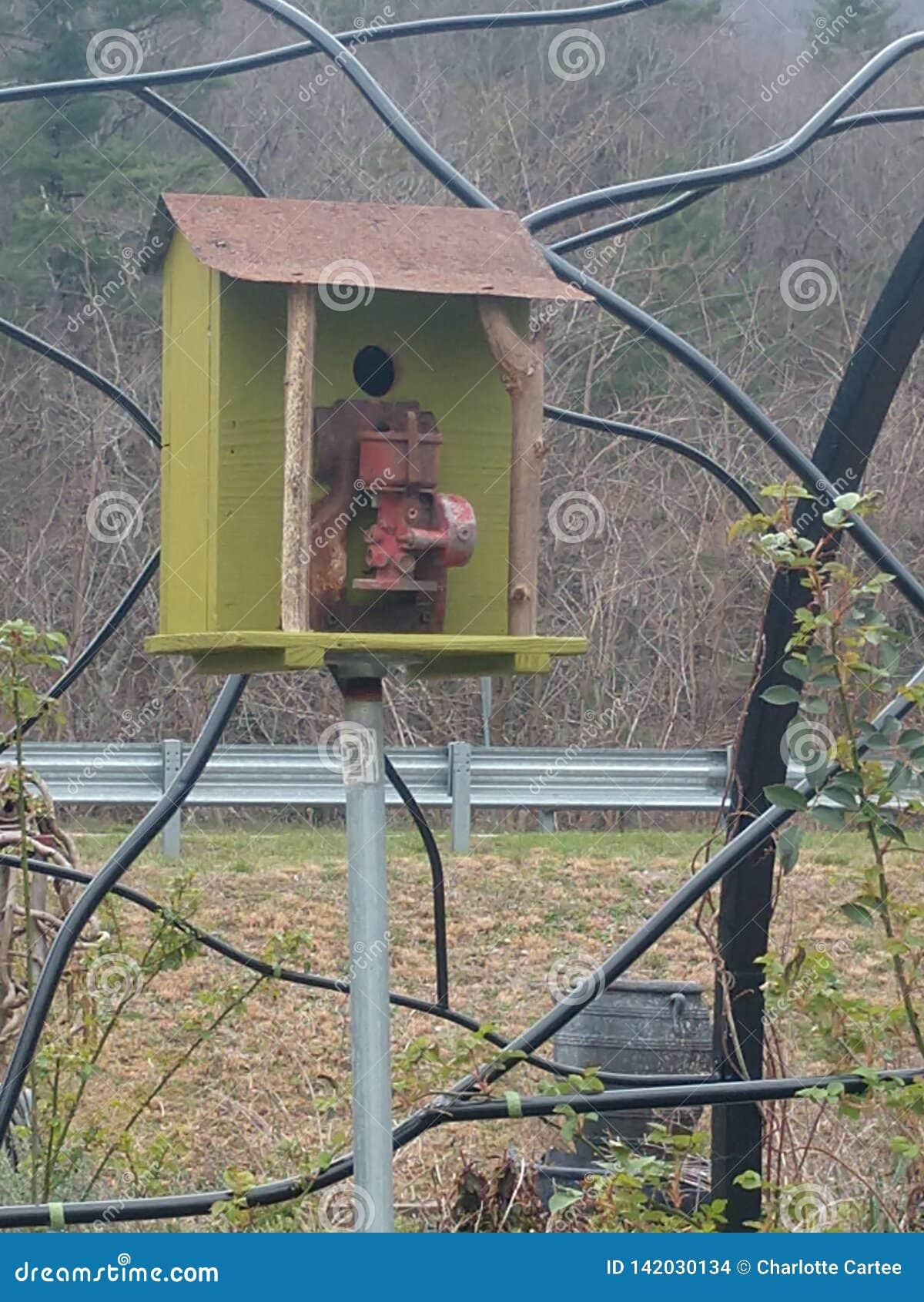 Litet träfågelhus