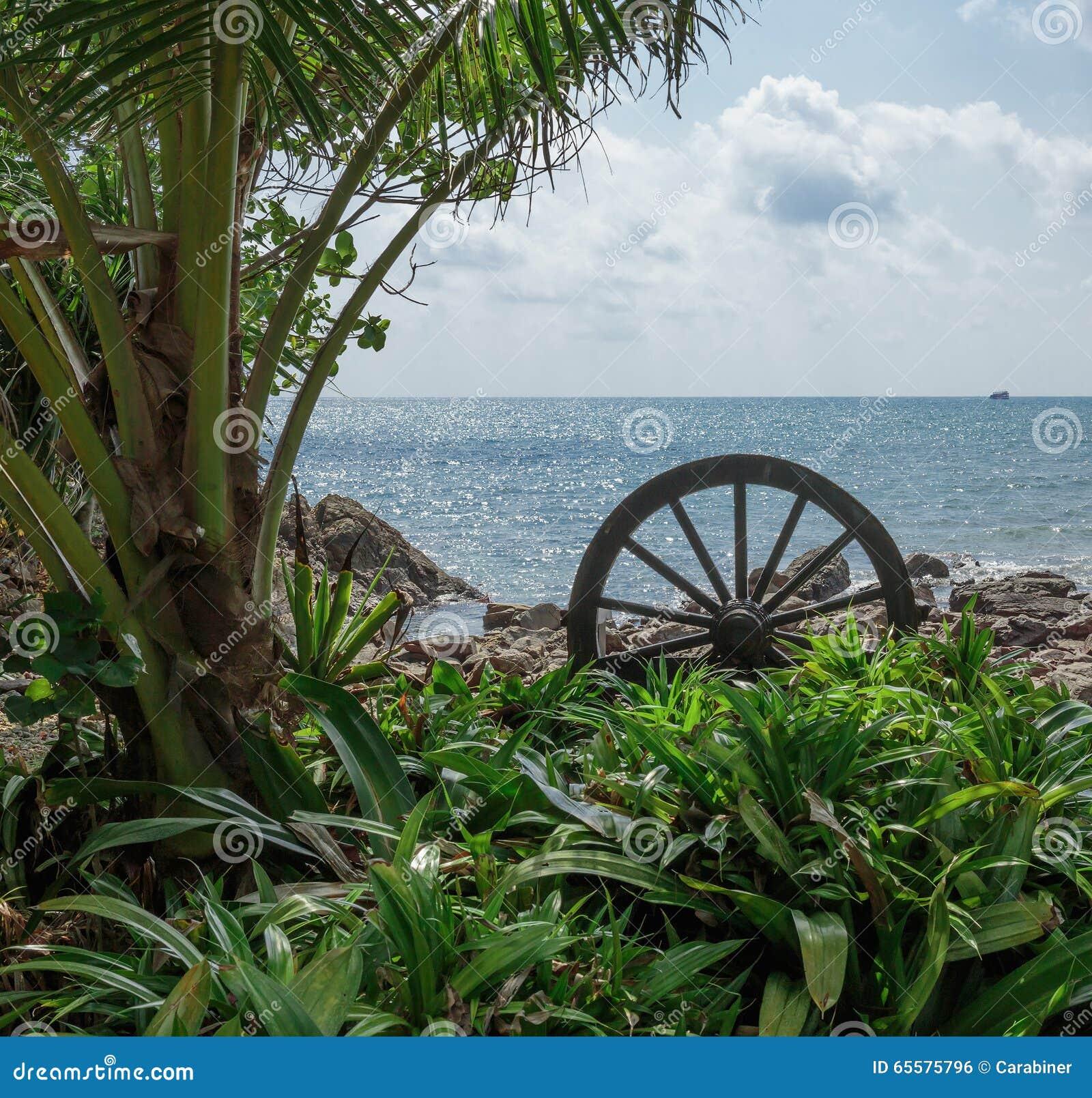 Litoral em um tropical