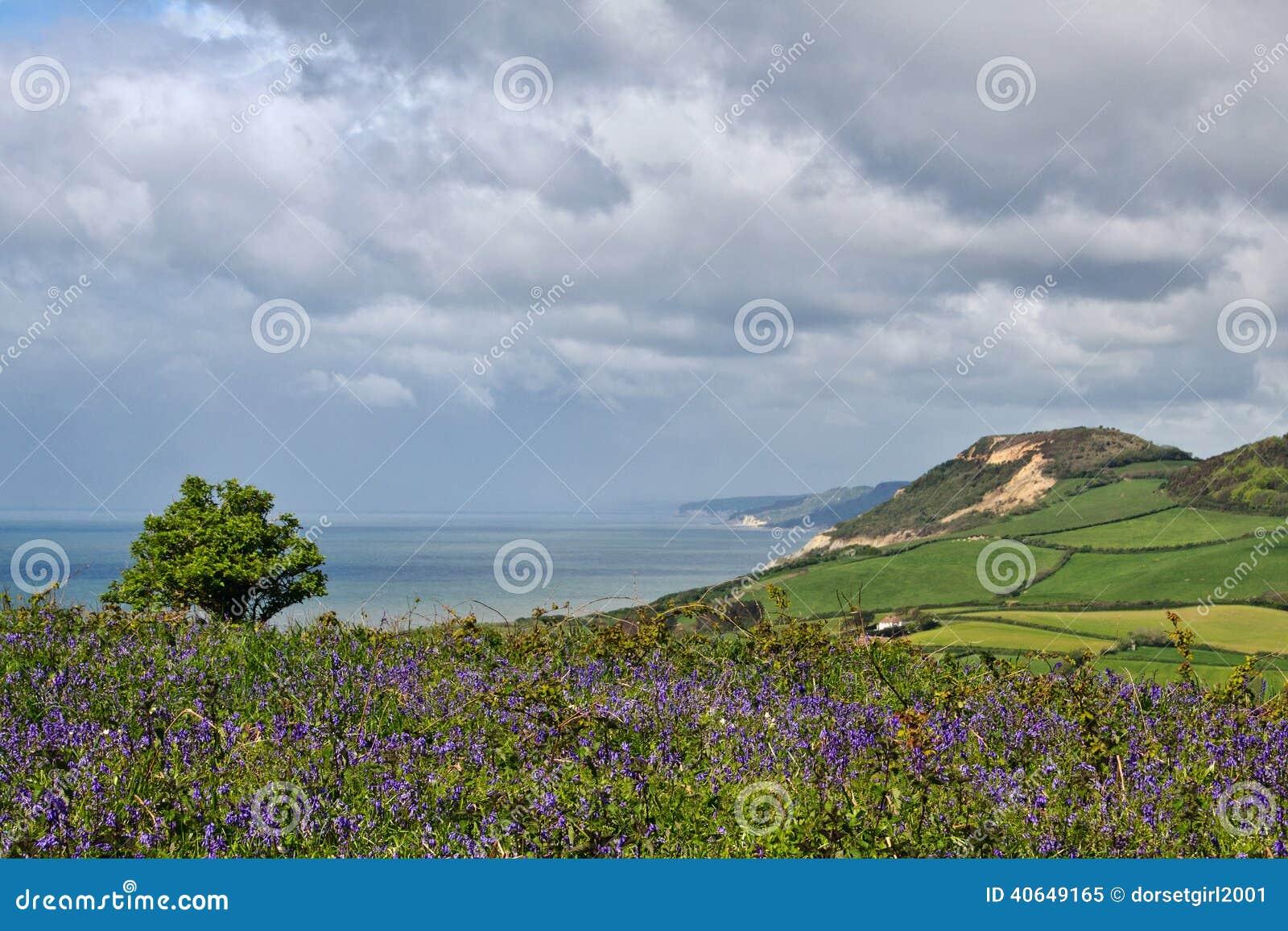 Litoral negligencie de Eype, Dorset