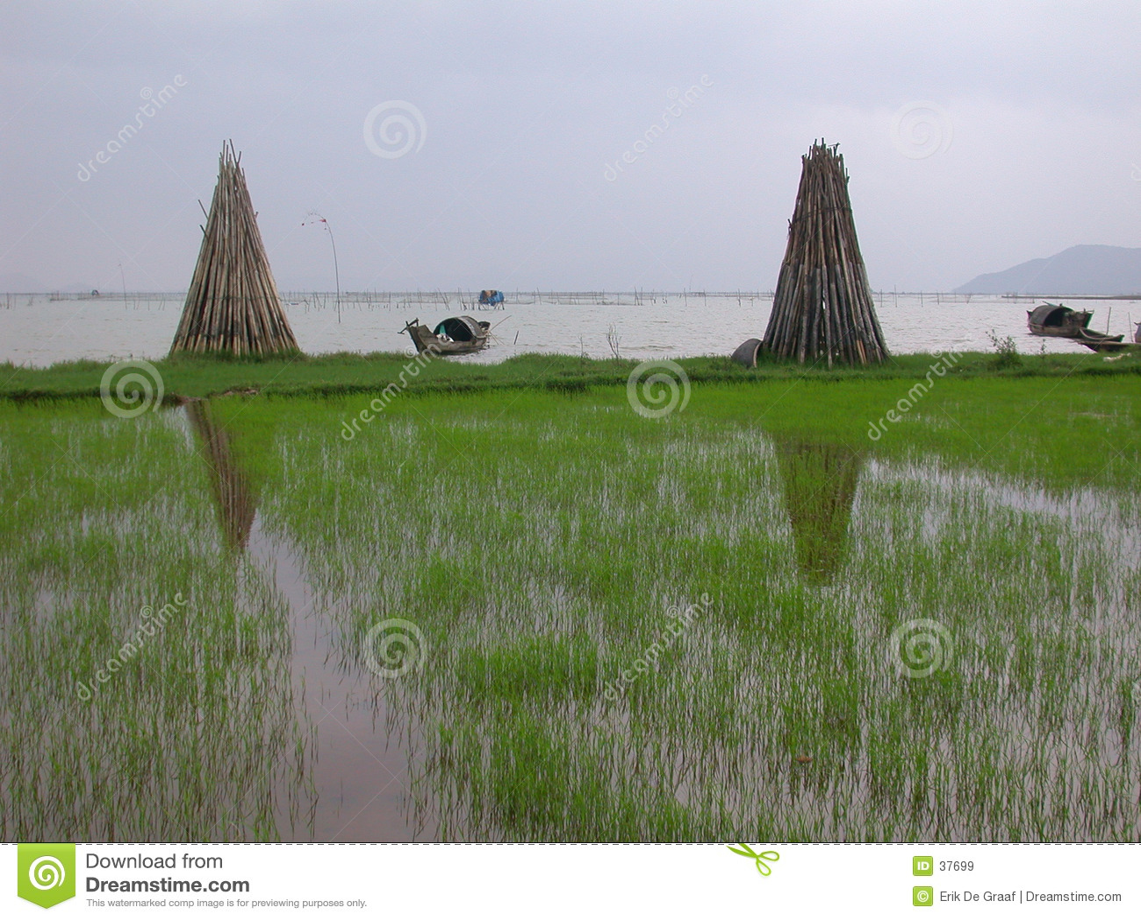 Litoral Vietnam