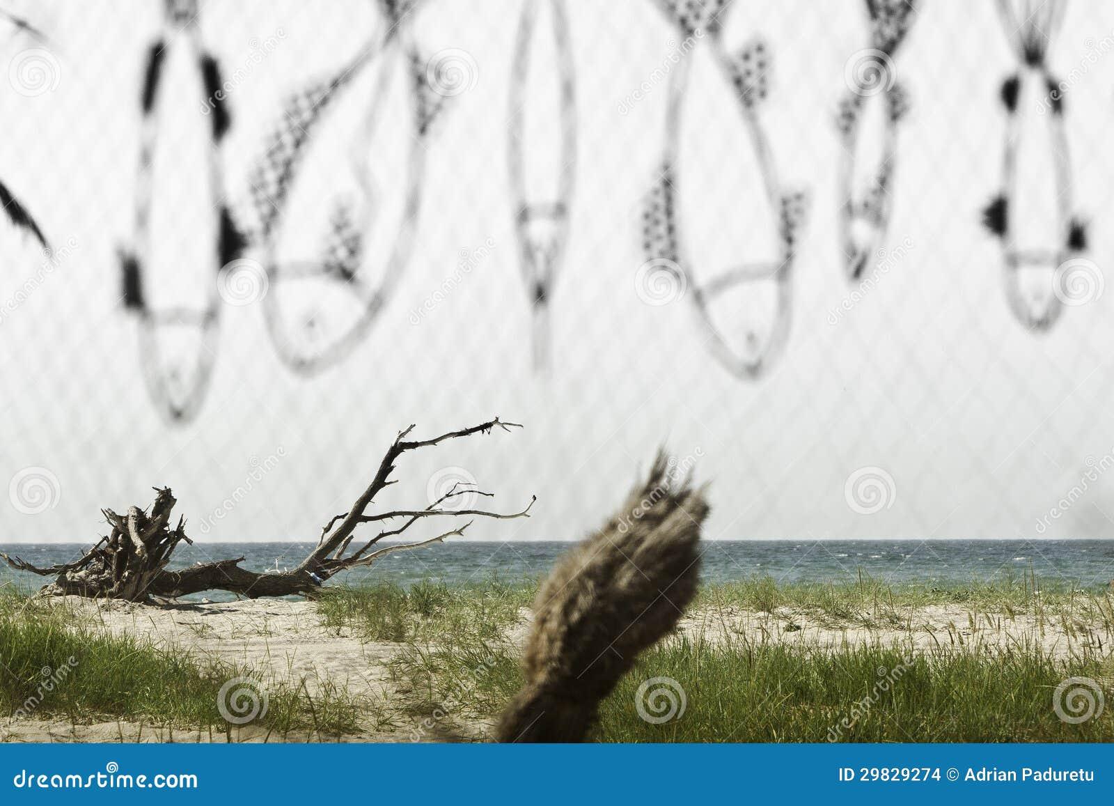 Litoral através de um fishnet