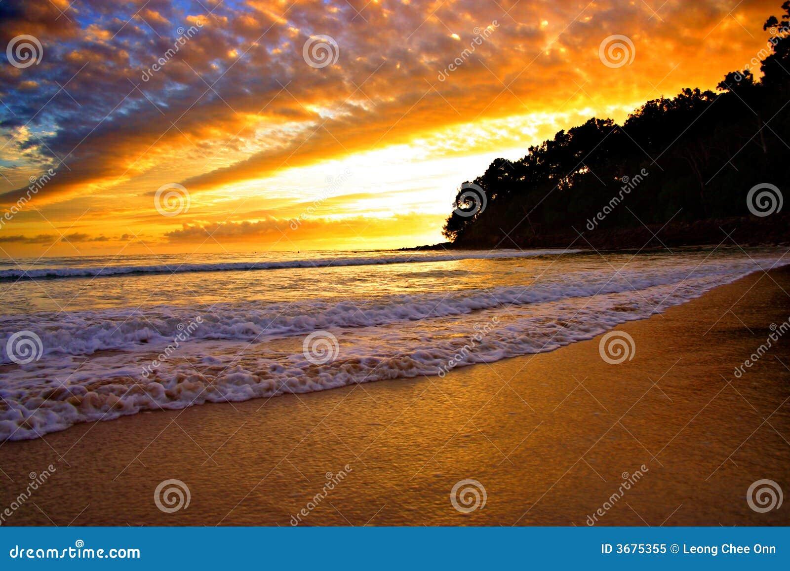 Download Litorale Del Sole, Australia Immagine Stock - Immagine di sole, pacifico: 3675355