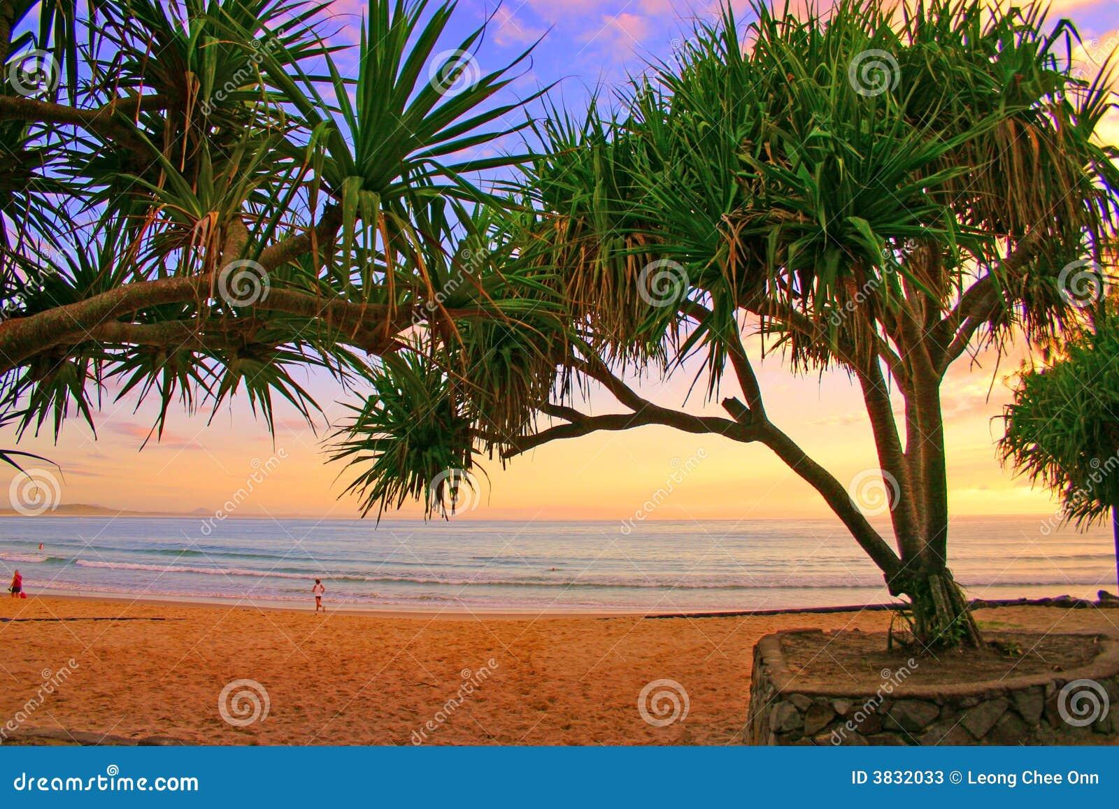 Litorale del sole, Australia