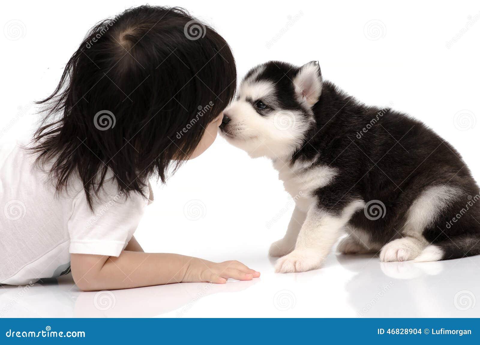Little Asian Baby Kissing Siberian Husky Puppy Stock Photo Image
