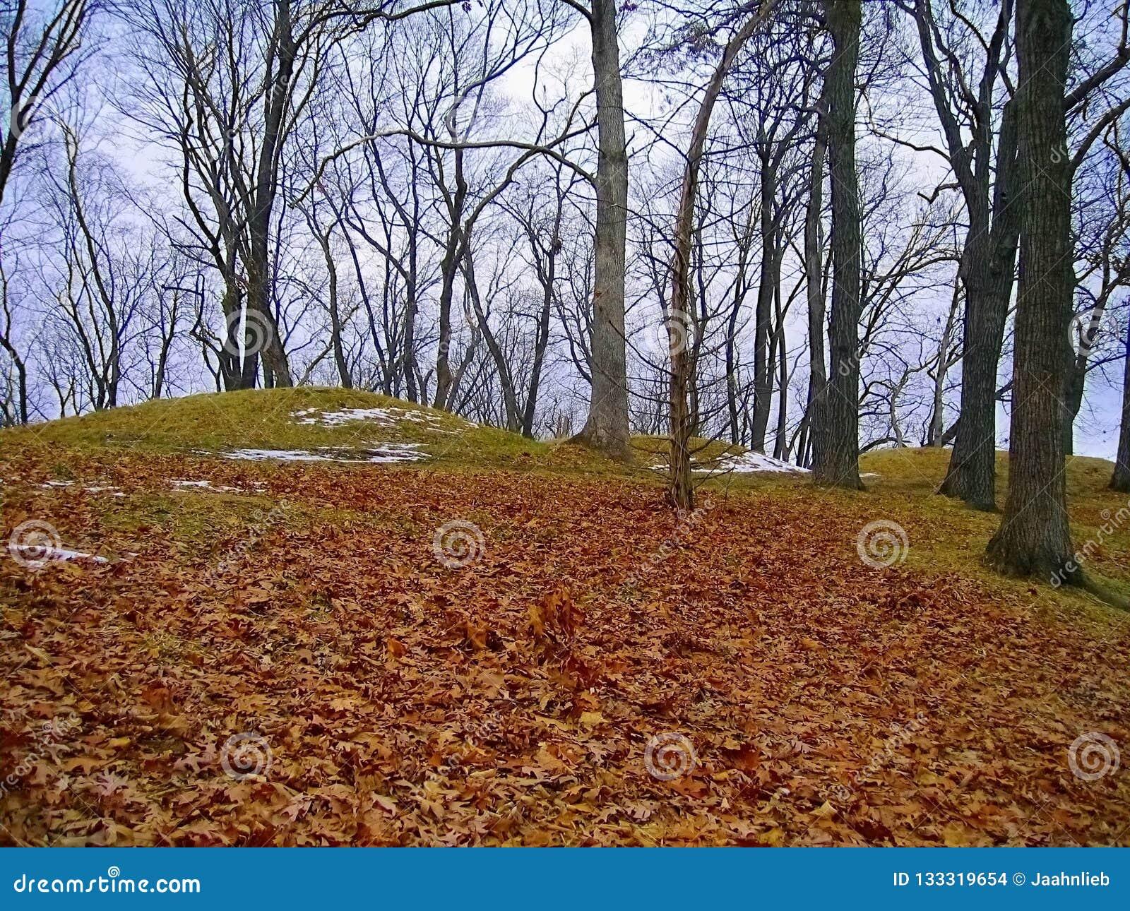Little Bear Mount Group At Fire Point, Effigy Mounds