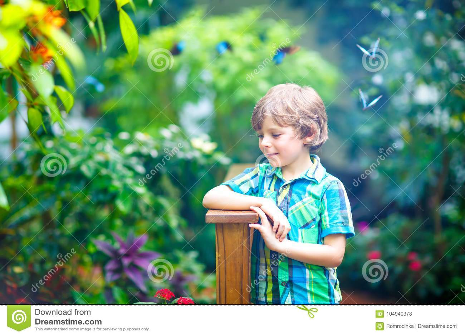 Little blond preschool kid boy discovering plants, flowers and butterflies at botanic garden