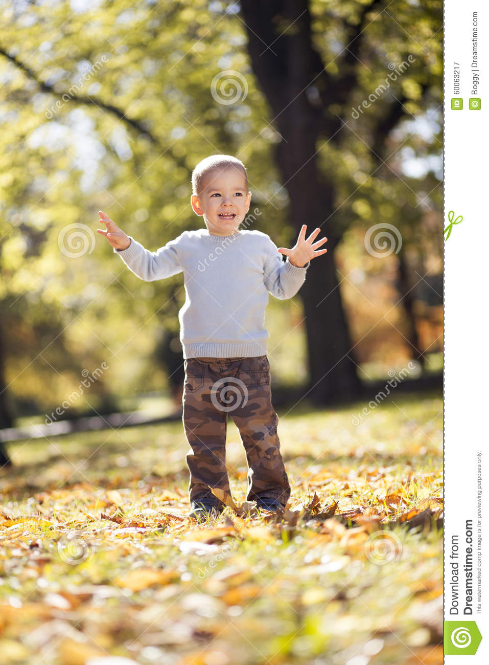 Little boy at the autumn park