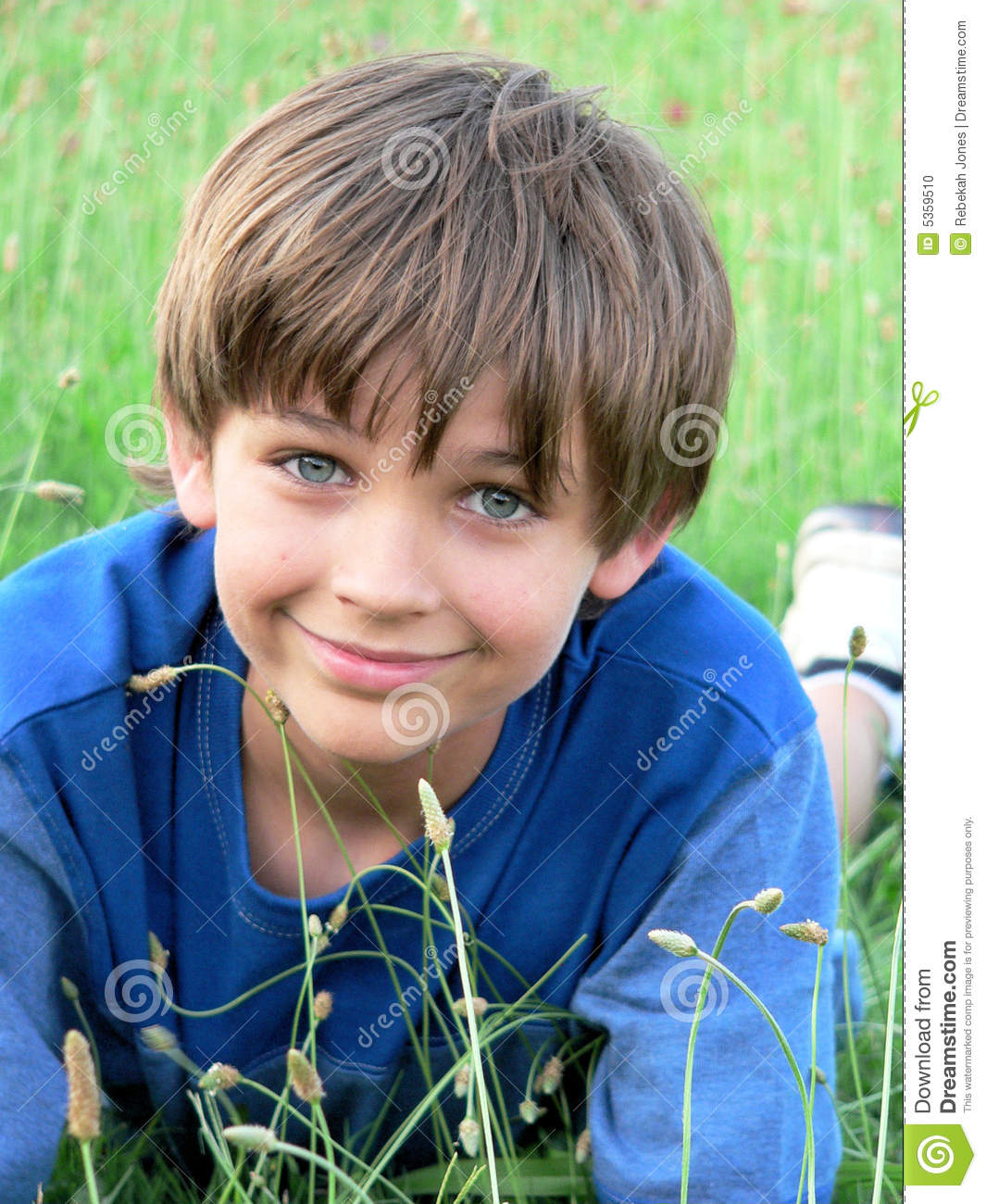 little-boy-blue-green-field-5359510.jpg