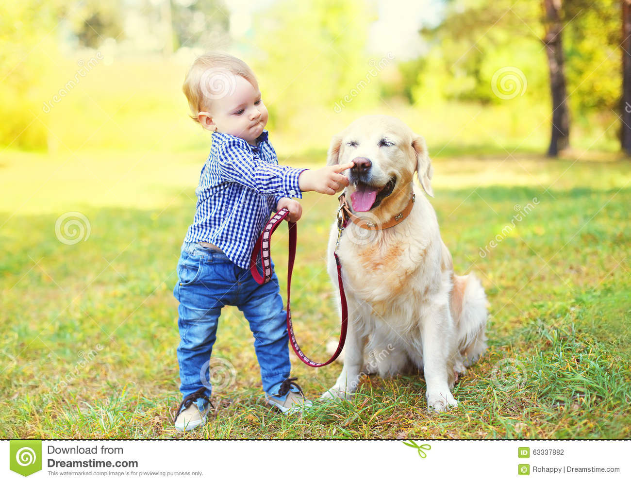 Little boy child playing with Golden Retriever dog on grass