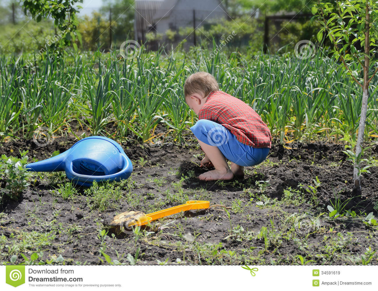 Little boy digging in the vegetable garden royalty free for Digging ground dream meaning