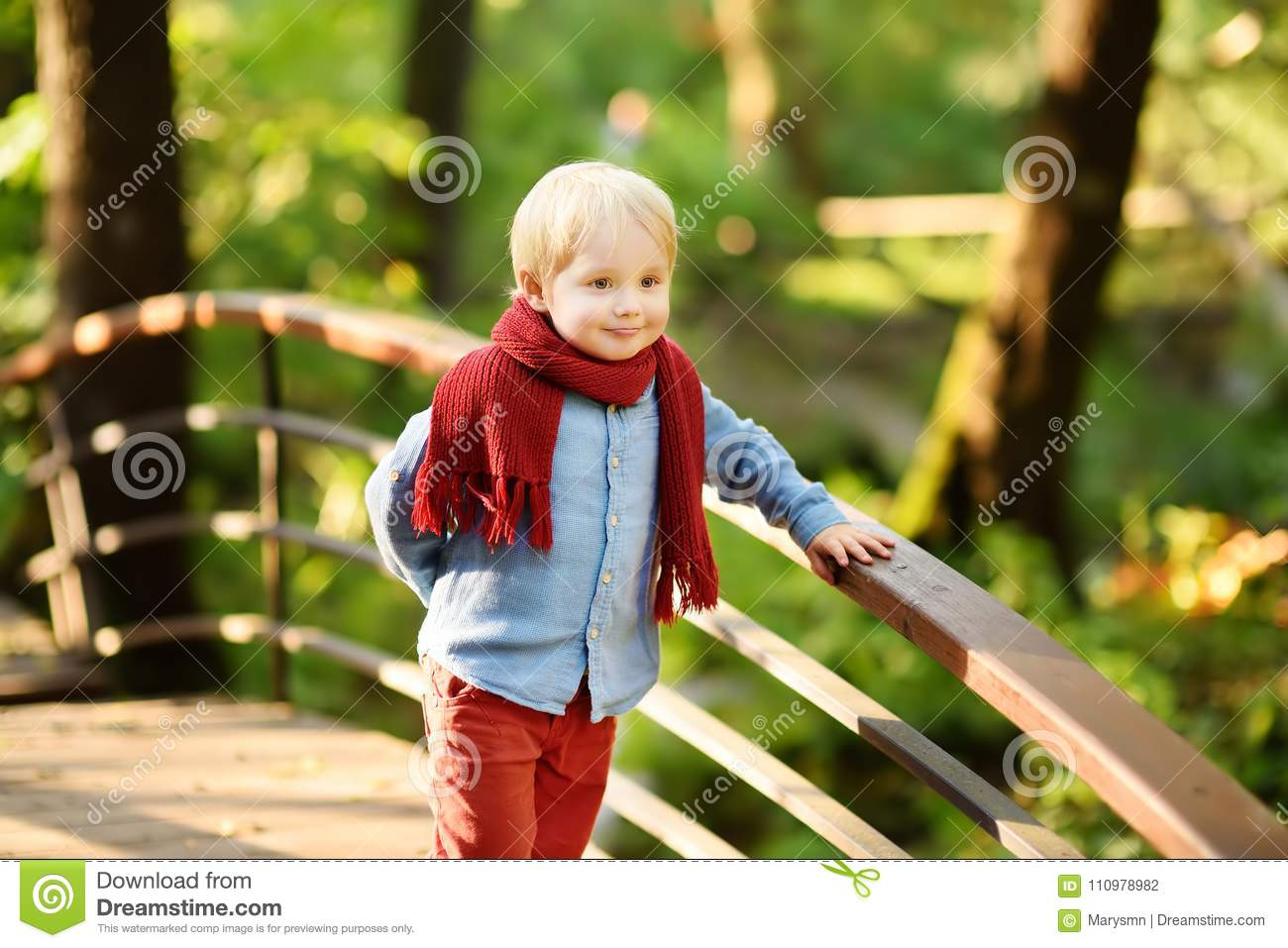 Little boy enjoy stroll in the sunny forest or in summer park