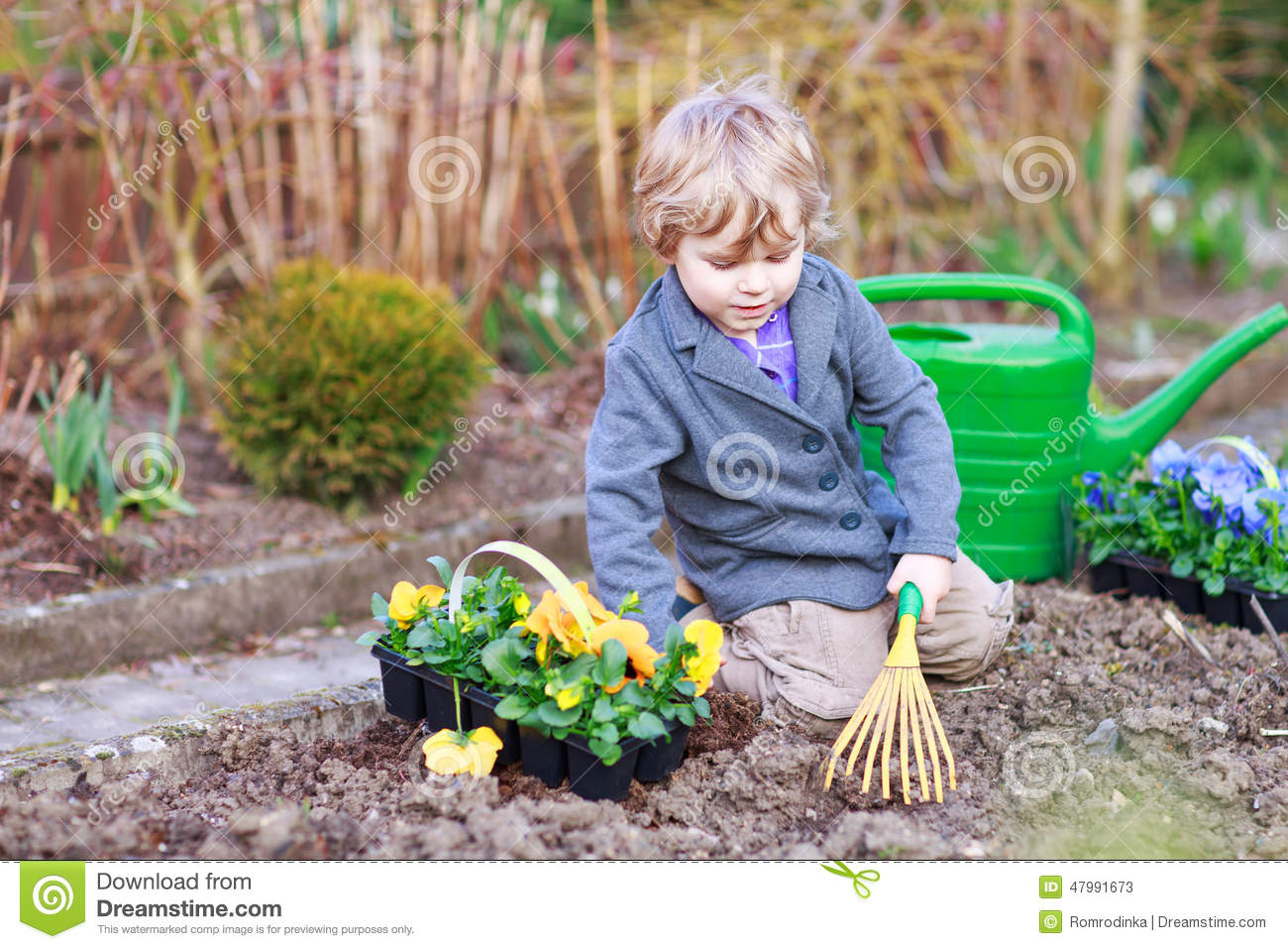 Boy of 2 gardening and planting vegetable plants and flowers in garden