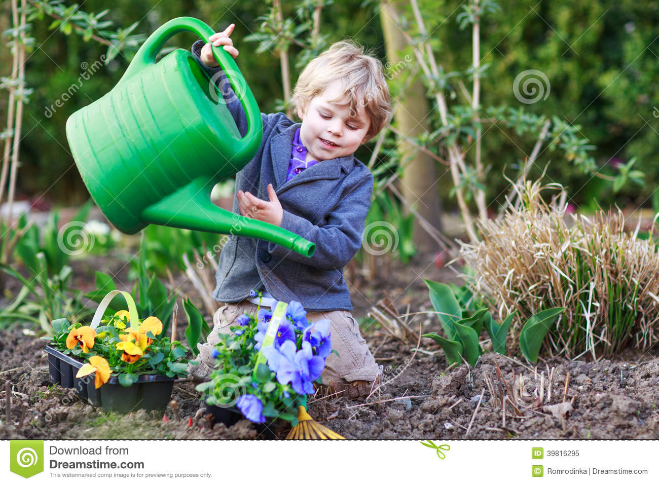 Boy gardening and planting vegetable plants and flowers in garden