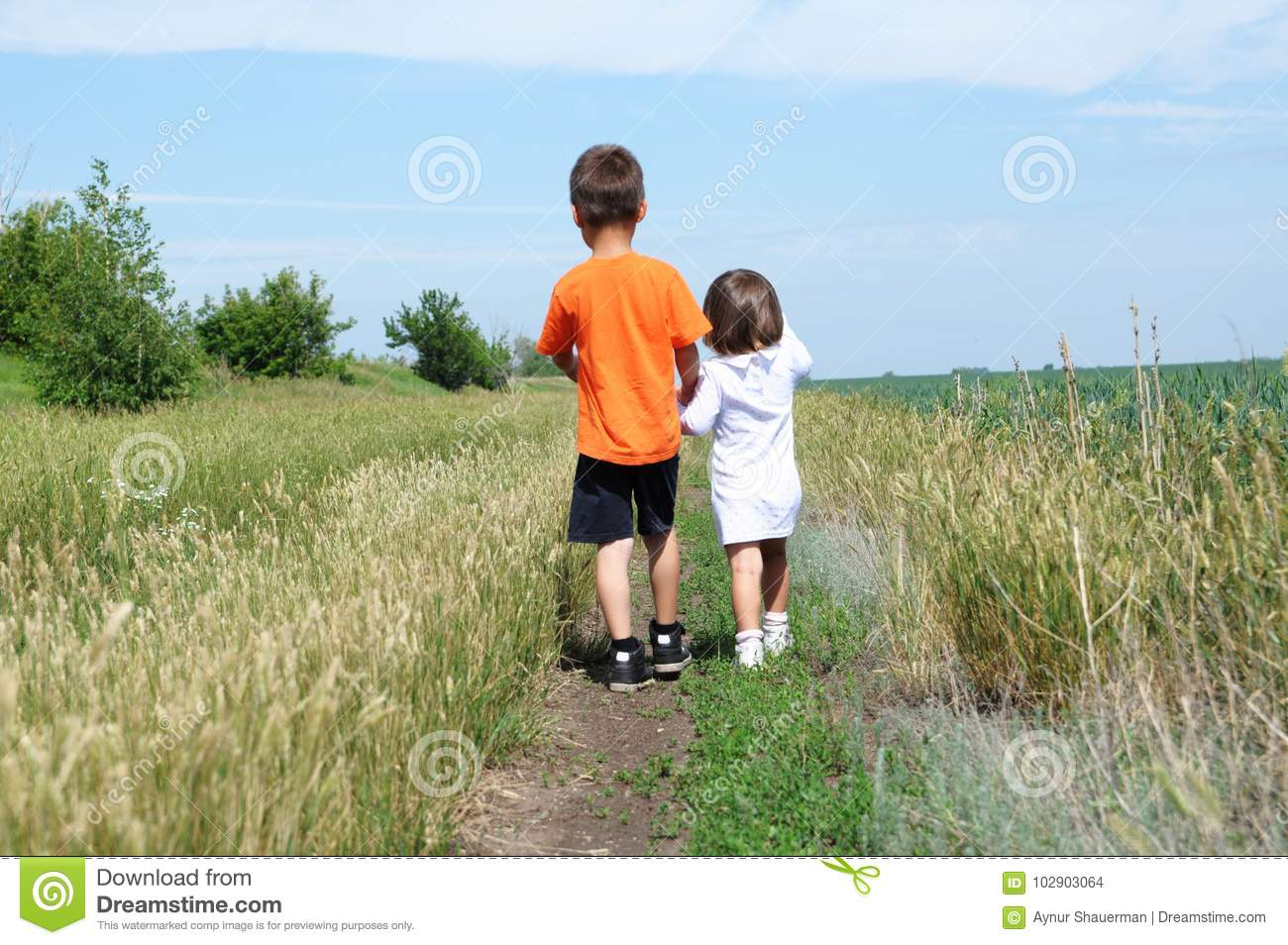 Little boy and little girl walking away on the road in the field at summer day, brother and sister