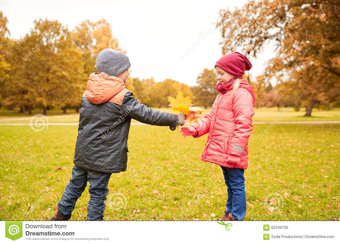 Little Boy Giving Autumn Maple Leaves To Girl Stock Photo Image Of
