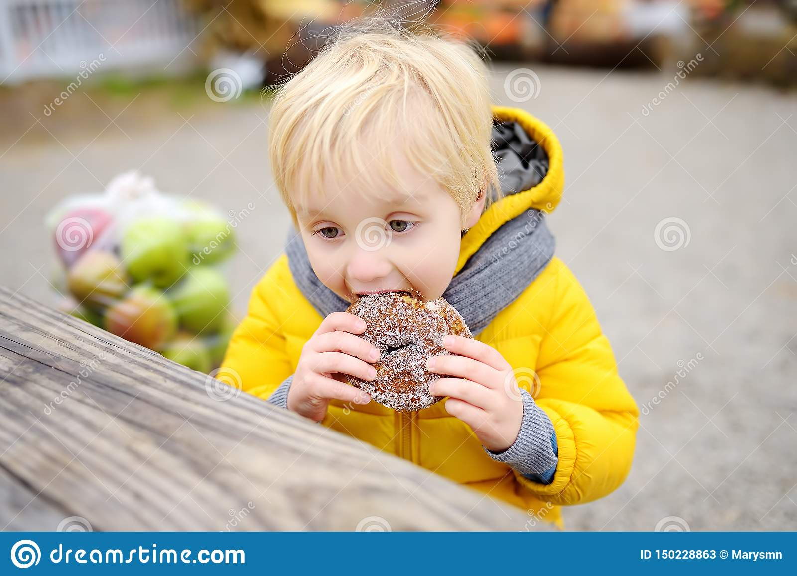 Little boy having lunch after shopping on traditional farmer agricultural market at autumn. Child eating donuts. Near kid on bench