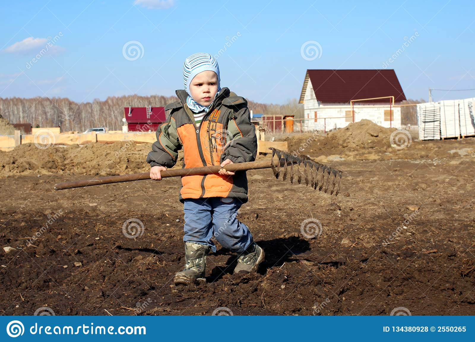 A little boy holding a large rake in his hands helps to work on the ground
