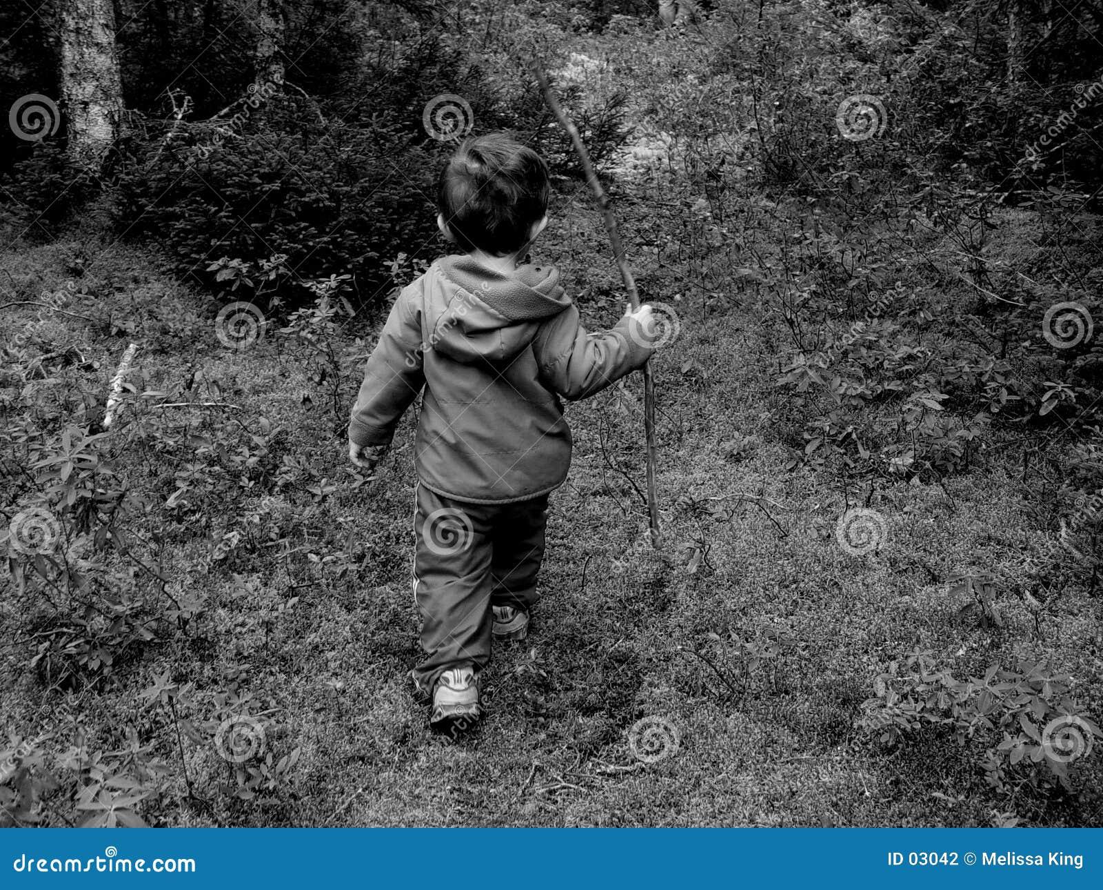 Little Boy im Holz