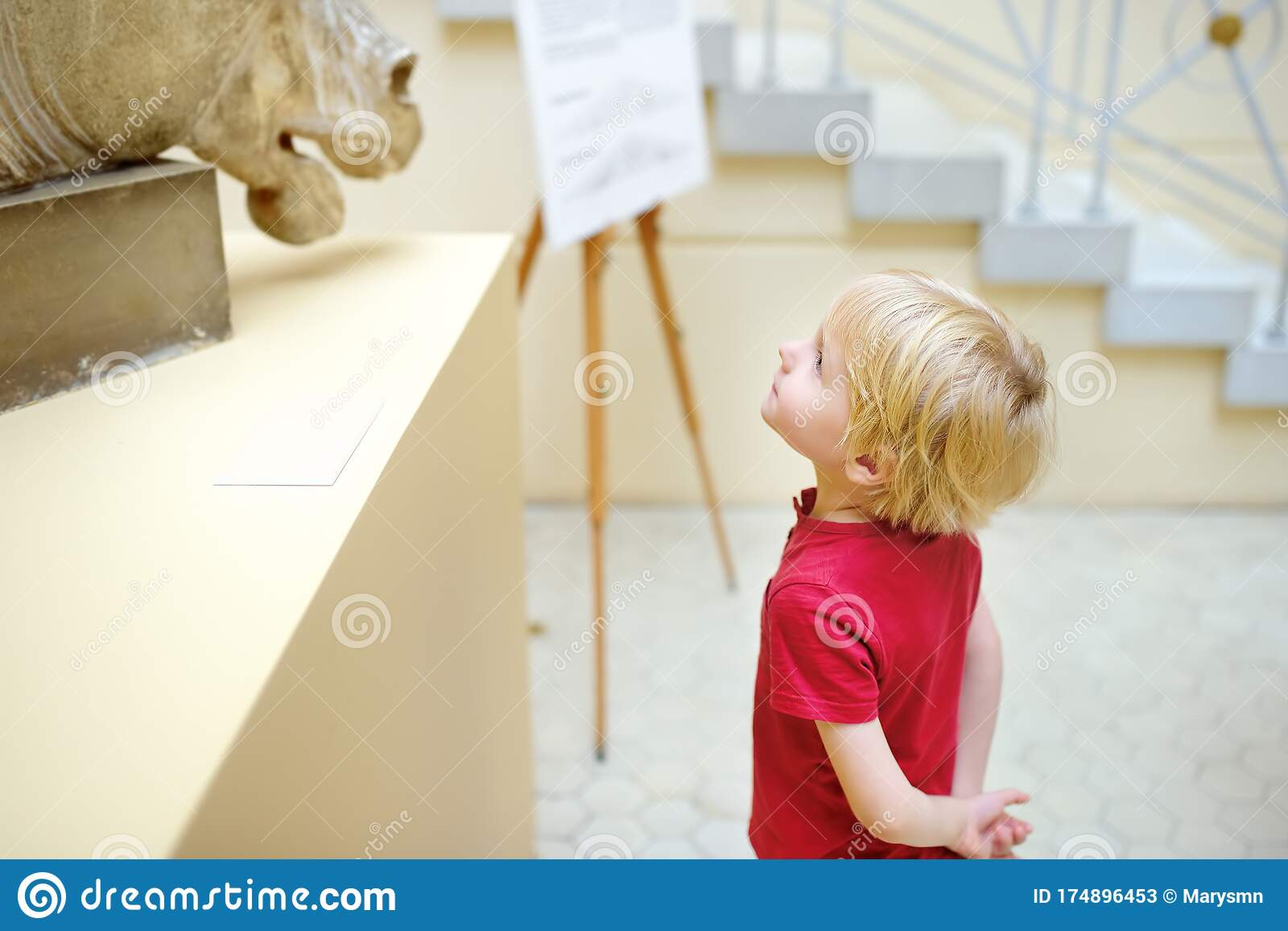 Little Boy Looking At Sculpture Of Horse S Head Stock Image Image Of Leisure Elementary 174896453